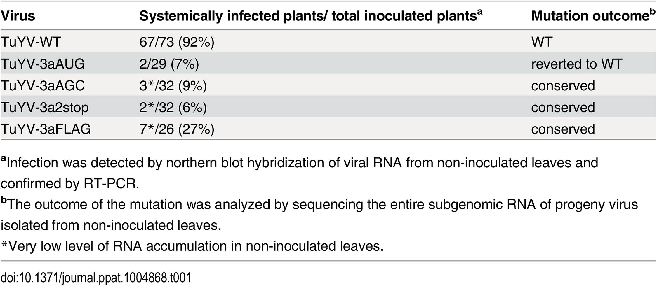 Systemic infection by TuYV containing P3a mutants.