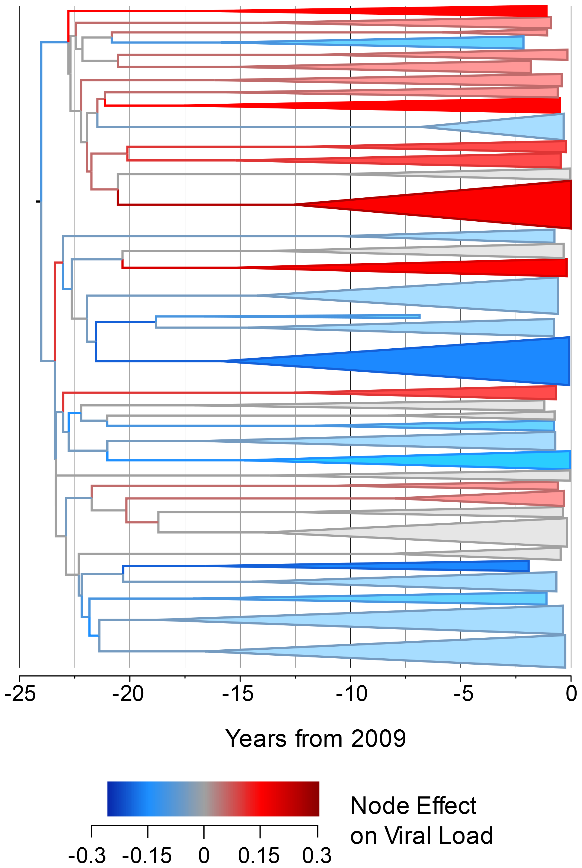 The estimated node effect plotted onto the phylogeny.