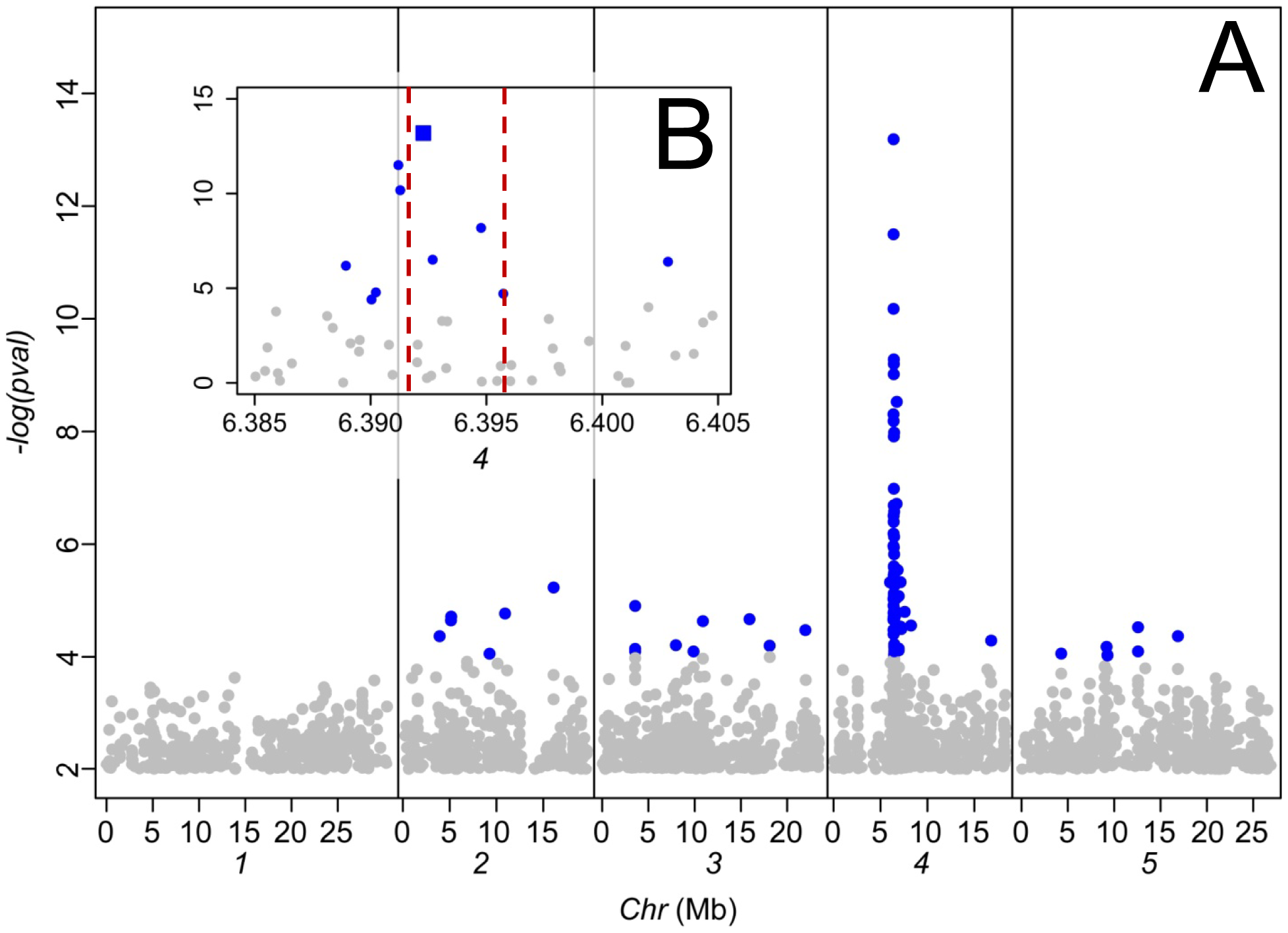 Genome-wide association analysis of leaf Na<sup>+</sup> accumulation in 349 <i>A. thaliana</i> accessions grown in a common garden.