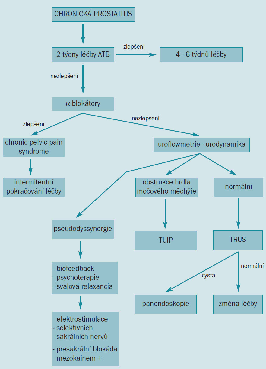 Algoritmus pro vyšetření a léčbu pacientů s chronickou prostatitis.