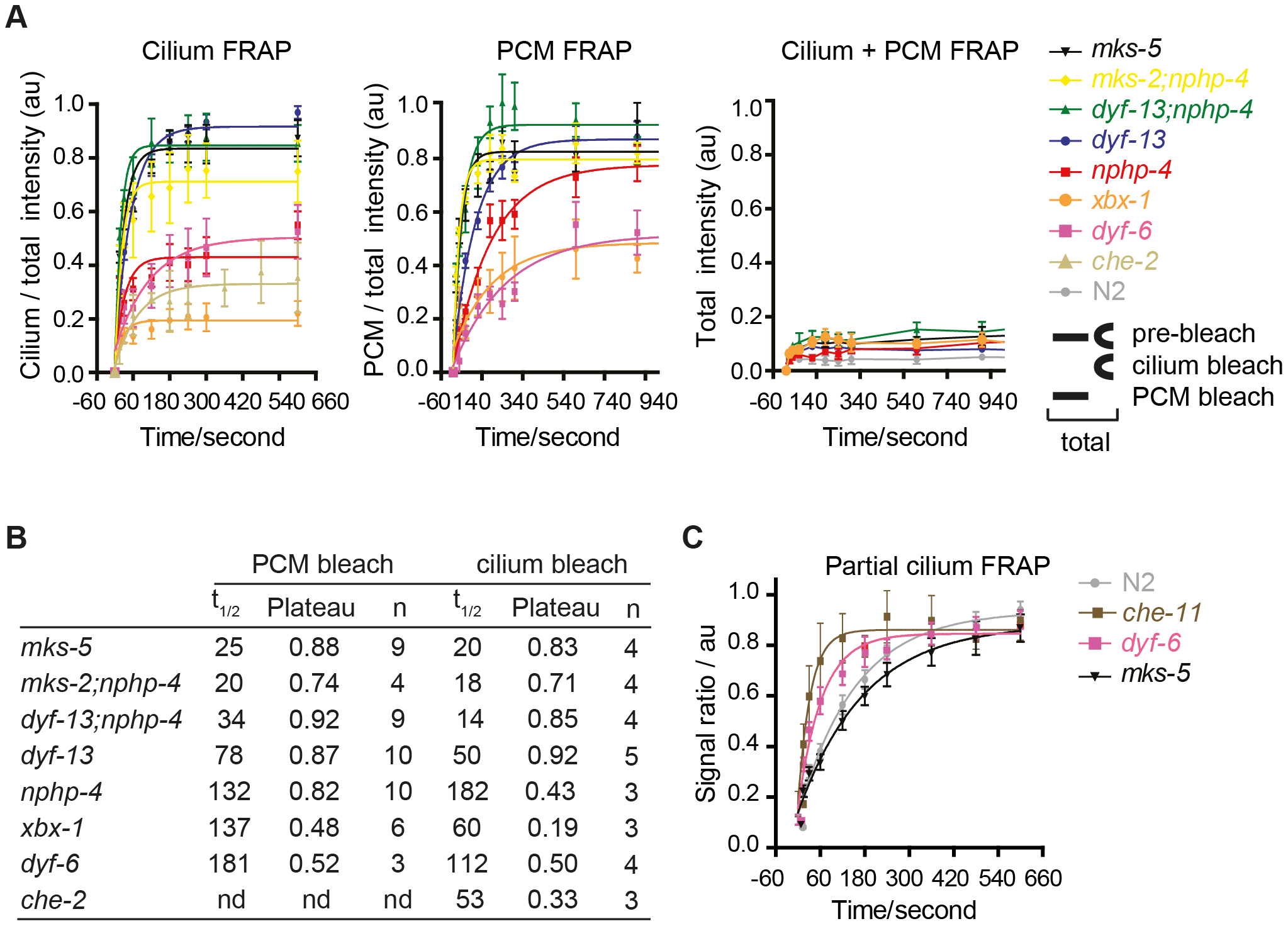 FRAP analysis of ARL-13 exchange dynamics between ciliary and periciliary membrane compartments in IFT and TZ gene mutants.