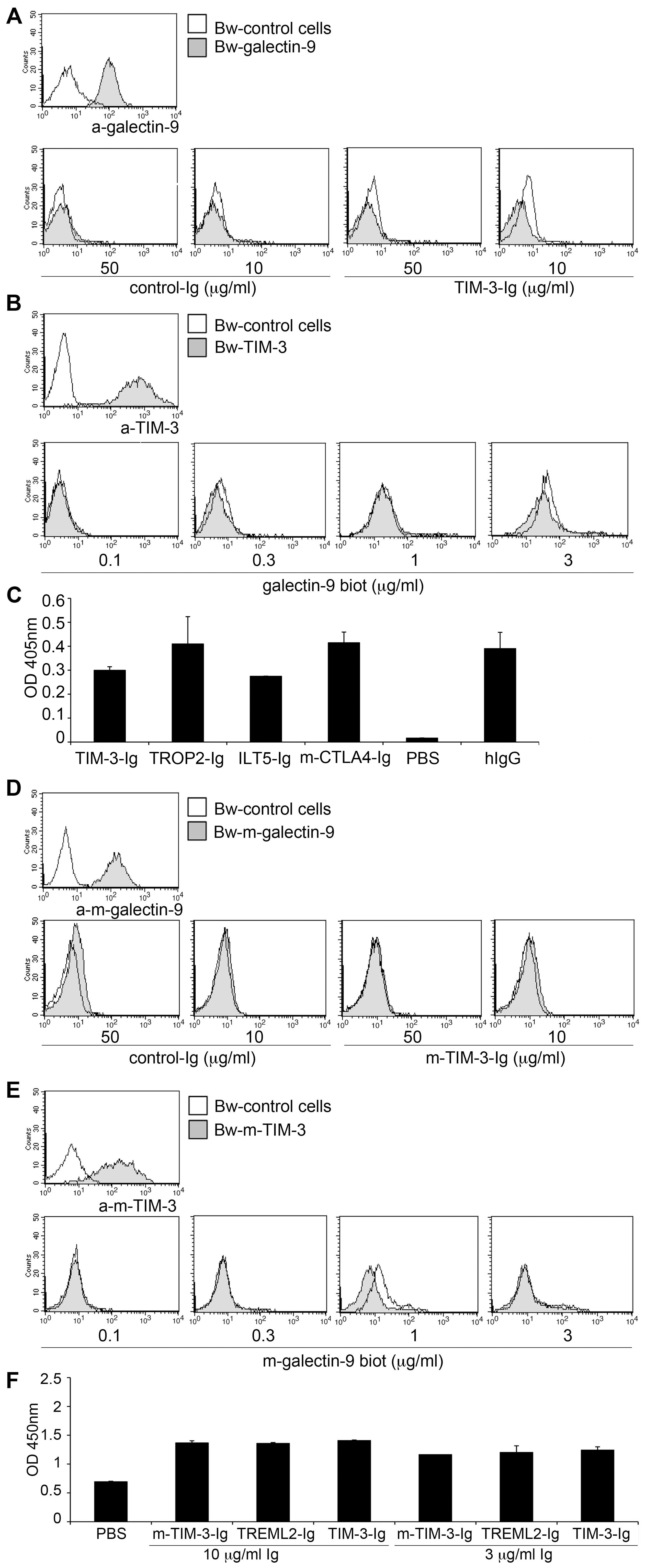 TIM-3 does not interact with galectin-9.