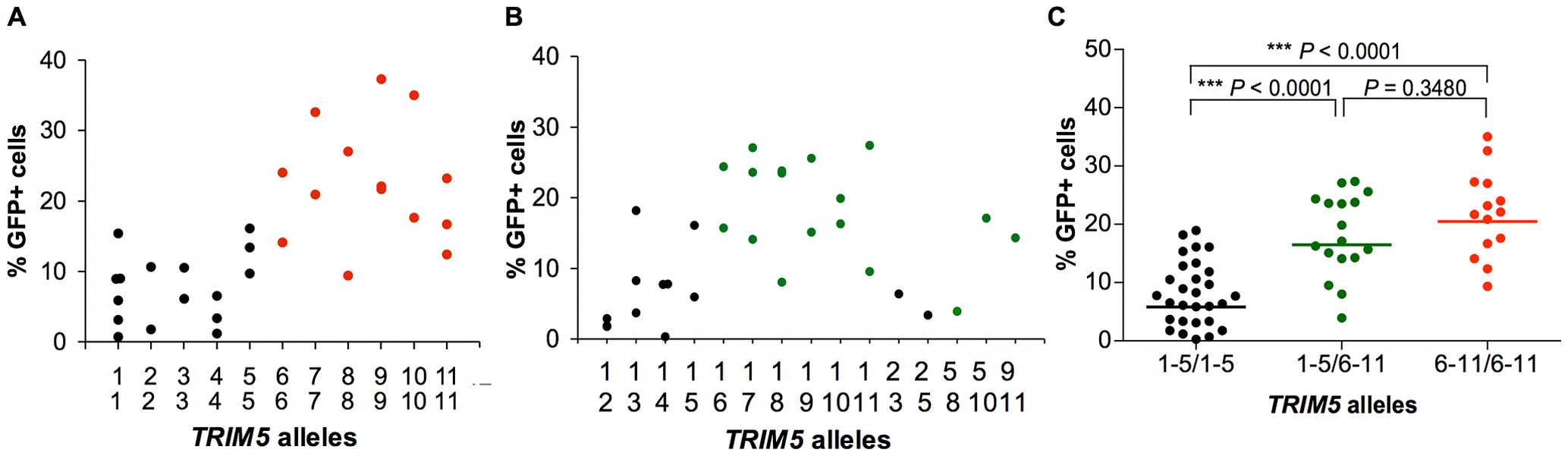 Effect of TRIM5α variants on susceptibility of B-LCLs to SIVmac239 infection.