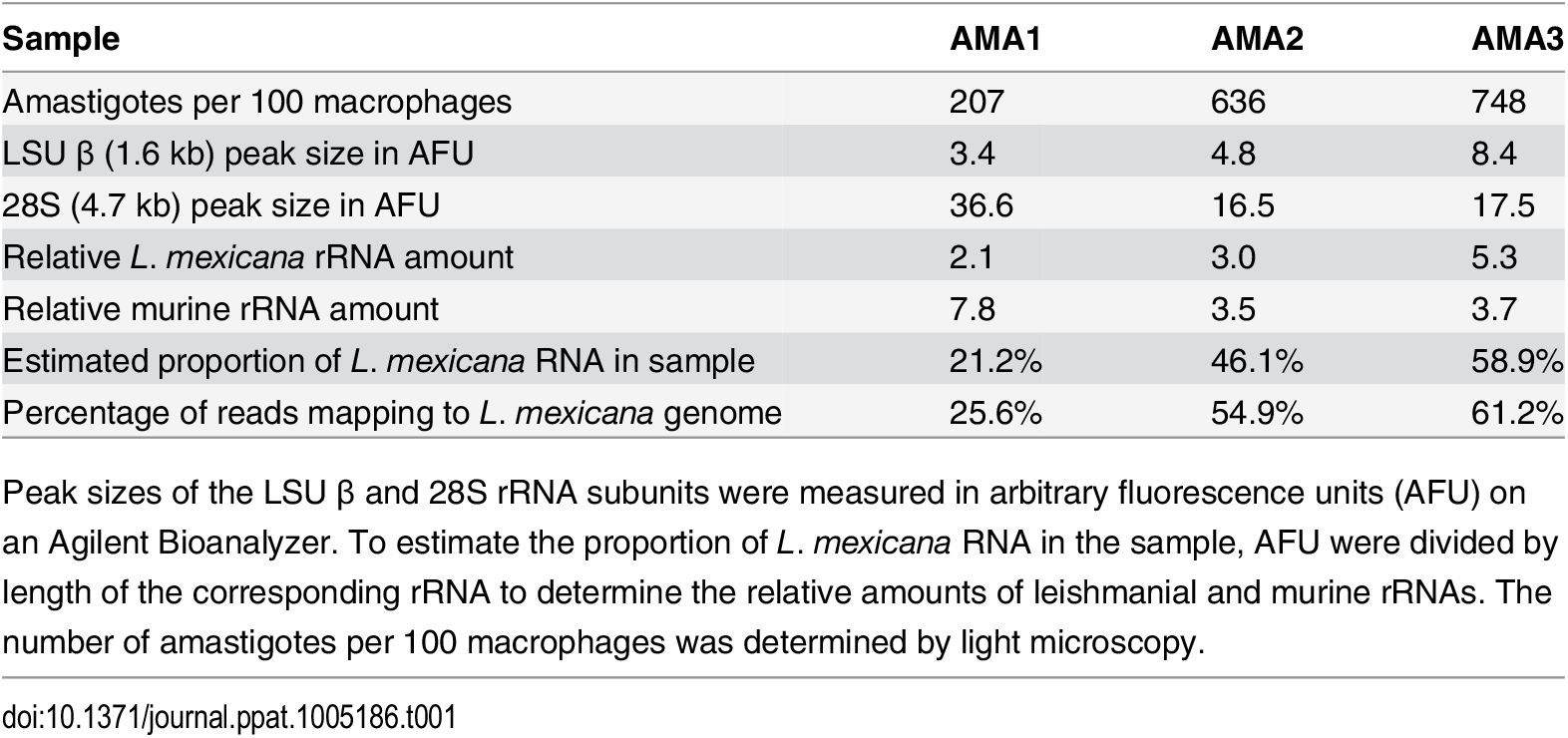 Estimate of <i>L</i>. <i>mexicana</i> RNA in mixed RNA samples from infected BMDMs.