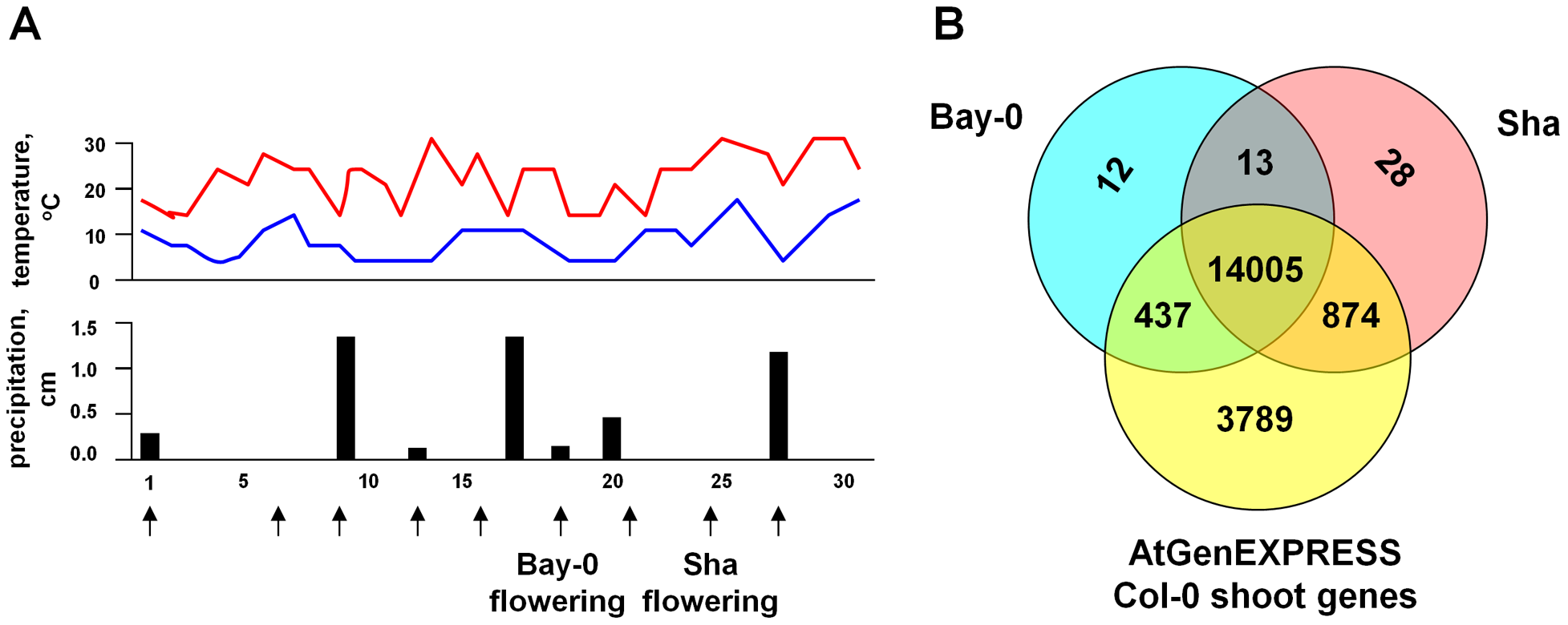 Field environmental conditions and total gene expression in <i>A. thaliana</i>.