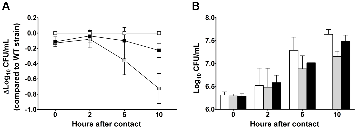 YPMT1.66c is required for intracellular survival in macrophages (A) and for optimal growth in serum (B).