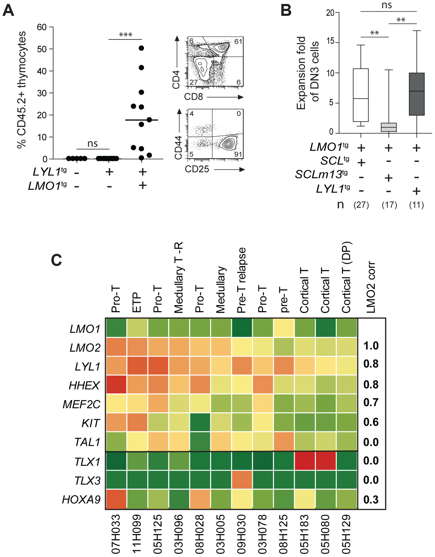 LYL1 and LMO1/2 are co-expressed in human T-ALL and collaborate to reprogram thymocytes.