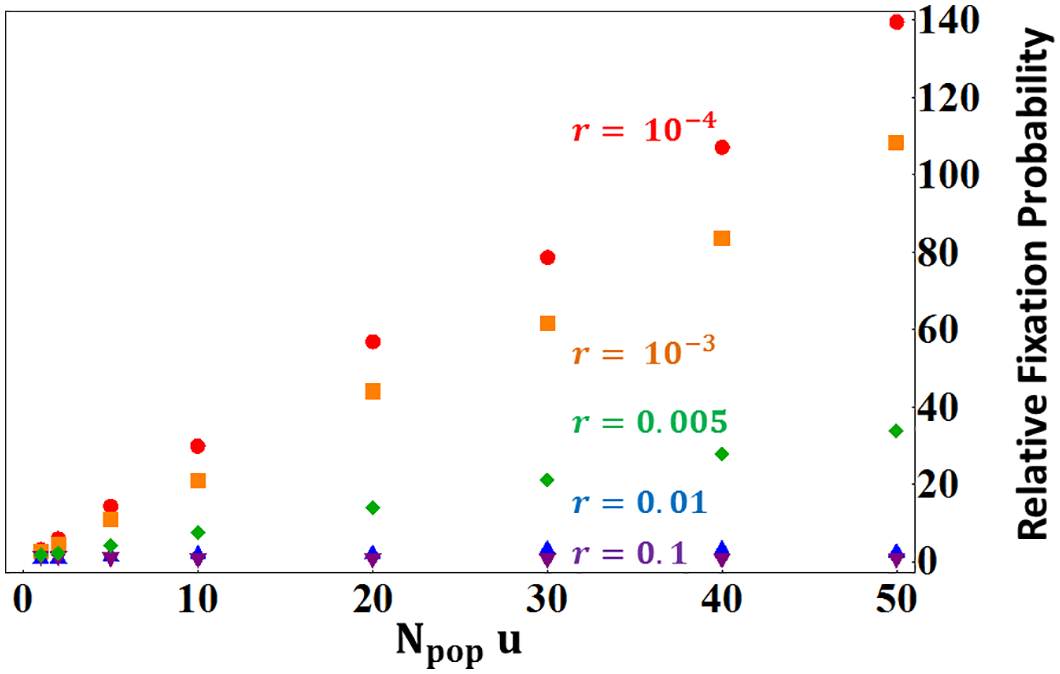 Fixation probabilities ratios of stronger enhancers (3:1 strength ratio compared to the resident allele) relative to that of neutral mutation (from <em class=&quot;ref&quot;>Eq 7</em>).