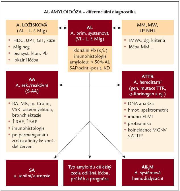 Diferenciální diagnostika AL-amyloidózy. AL – AL-amyloidóza, LŘ MIg – lehké řetězce monoklonálního imunoglobulinu, Pb – plazmatické buňky, SAP- scintigrafie – scintigrafie s použitím označené sérové amyloidové P-komponenty, HDC – horní dýchací cesty, UPT – uropoetický aparát, GIT – gastrointestinální trakt, MM – mnohočetný myelom, MW – Waldenströmova makroglobulinemie, LP-NHL – lymfoplazmocytární ne-hodgkinský lymfom, IMWG – Internati onal Myeloma Working Group, AA – sekundární, resp. reaktivní amyloidóza, RA – revmatoidní artritida, MB – Bechtěrevova choroba, VSK – vaskulitidy, RAF – reaktanty akutní fáze, ATTR – hereditární amyloidóza podmíněná mutací genů pro transthyretin, DNA – deoxyribonukleová kyselina, ELMI – elektronová mikroskopie, MGNV – monoklonální gamapatie nejistého původu, SA – senilní amyloidóza, Aβ<sub>2</sub>M – dialyzační amyloidóza, kde prekurzorem amyloidu je β<sub>2</sub>- mikroglobulin.