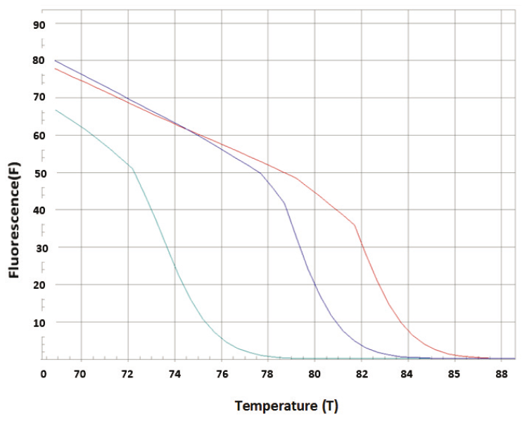 Fig. 2: Representative melting curve of DNA of control MCF-7 cells (1), and docetaxel treated MCF-7 cells (2 - 1 µM, 3 - 250 µM).