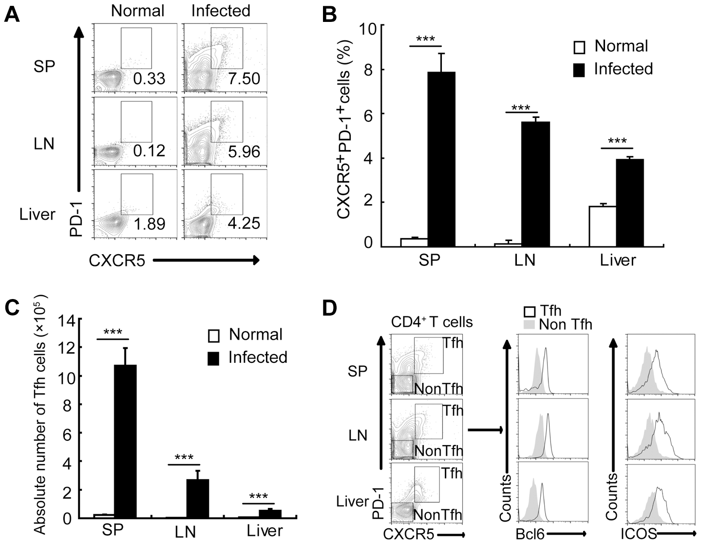 <i>S. japonicum</i> infection drives Tfh cell generation.