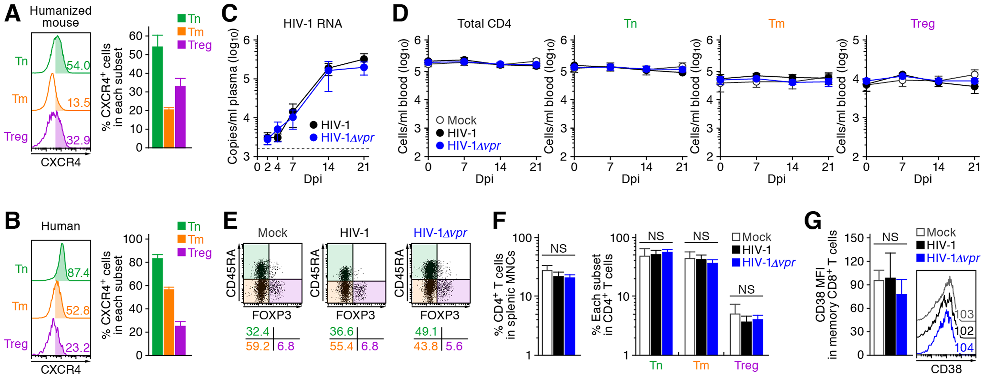 Dynamics of X4 WT and <i>vpr</i>-deficient HIV-1 infection in humanized mice.