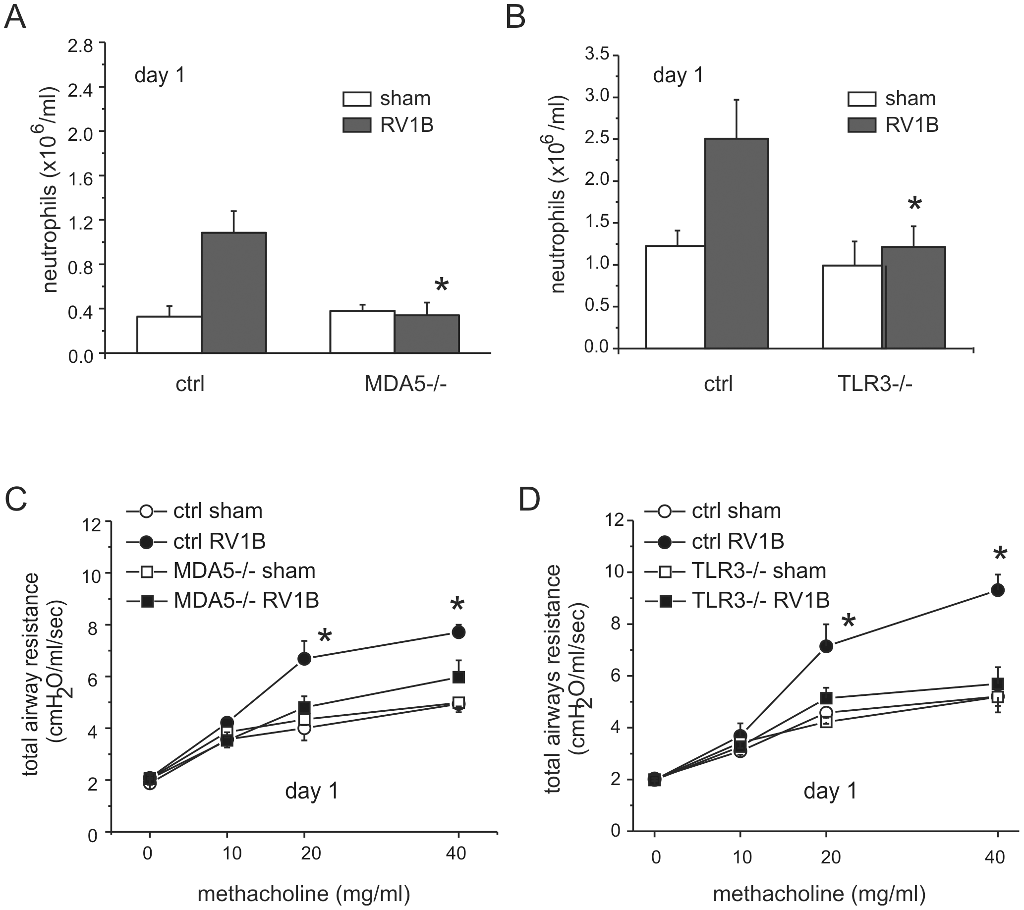 Airway inflammation and responsiveness in RV1B-infected MDA5−/− and TLR3−/− mice.