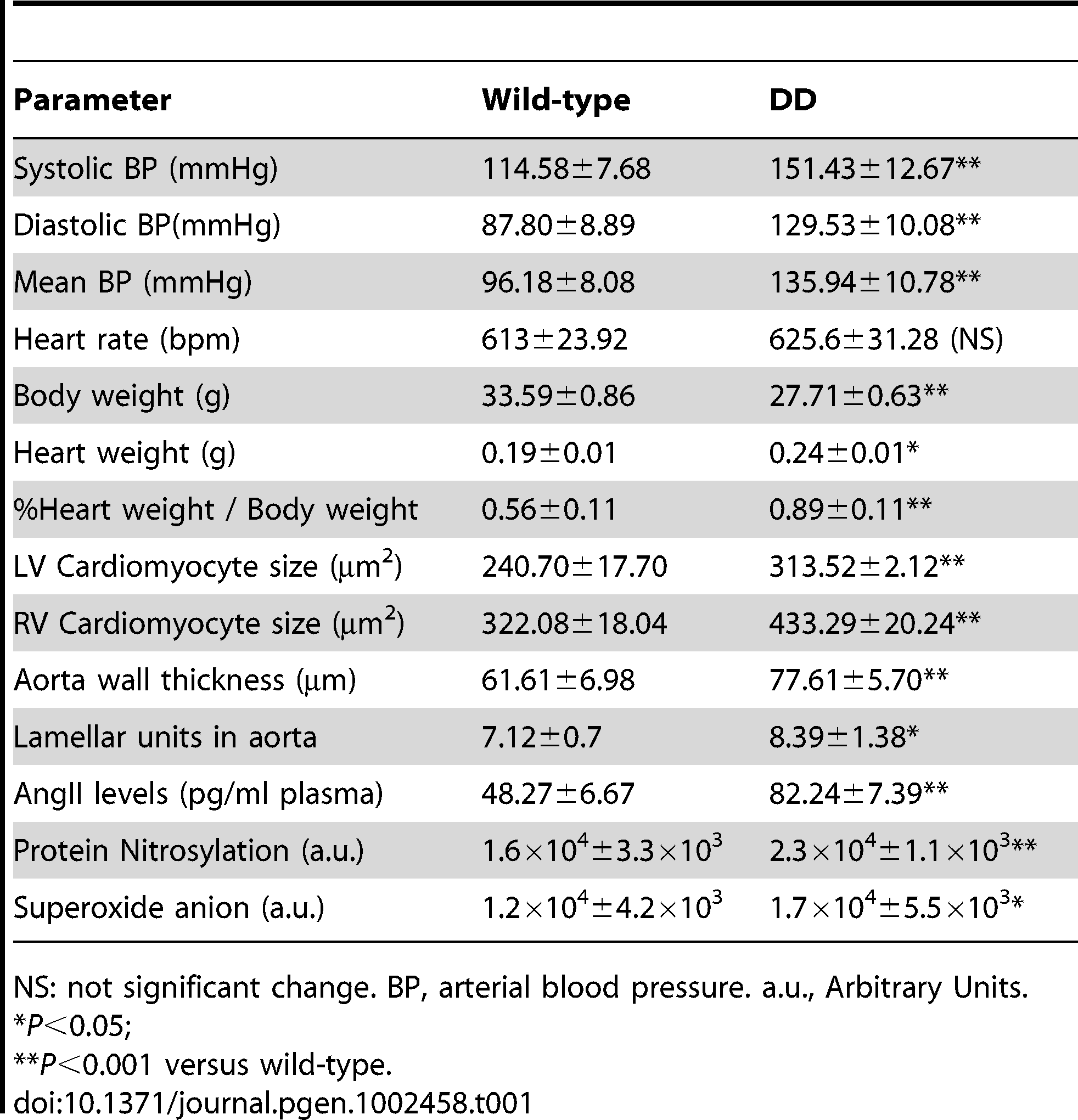 Cardiovascular parameters of 16-week-old wild-type and DD mutant mice.