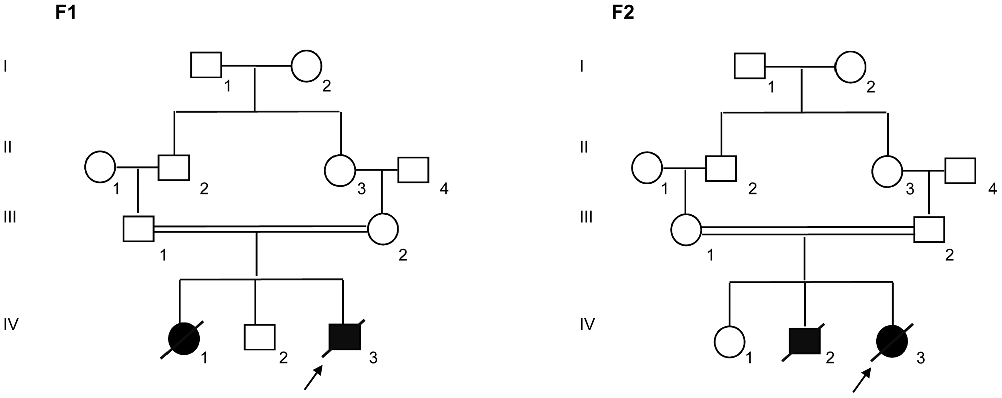 Pedigrees of the families F1 and F2 included in this study.