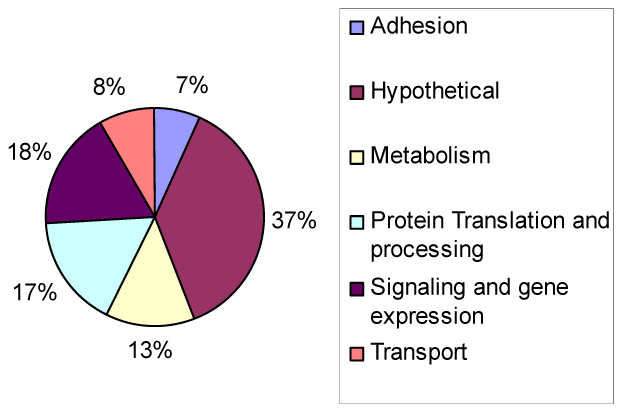 Types of genes modulated by TgGCN5-A during alkaline stress.