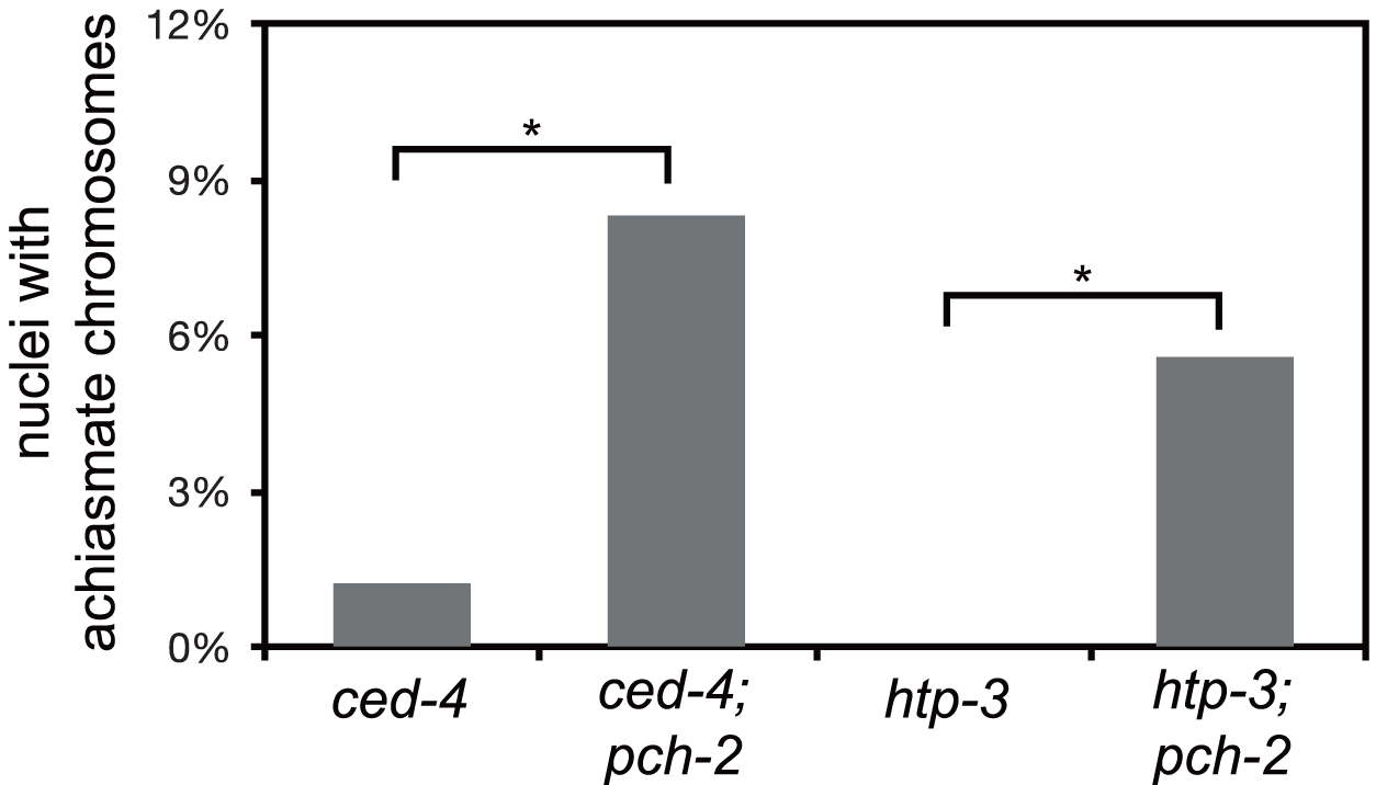 Mutation of <i>pch-2</i> exacerbates meiotic defects in mutants defective in germline apoptosis and HTP-3 function.