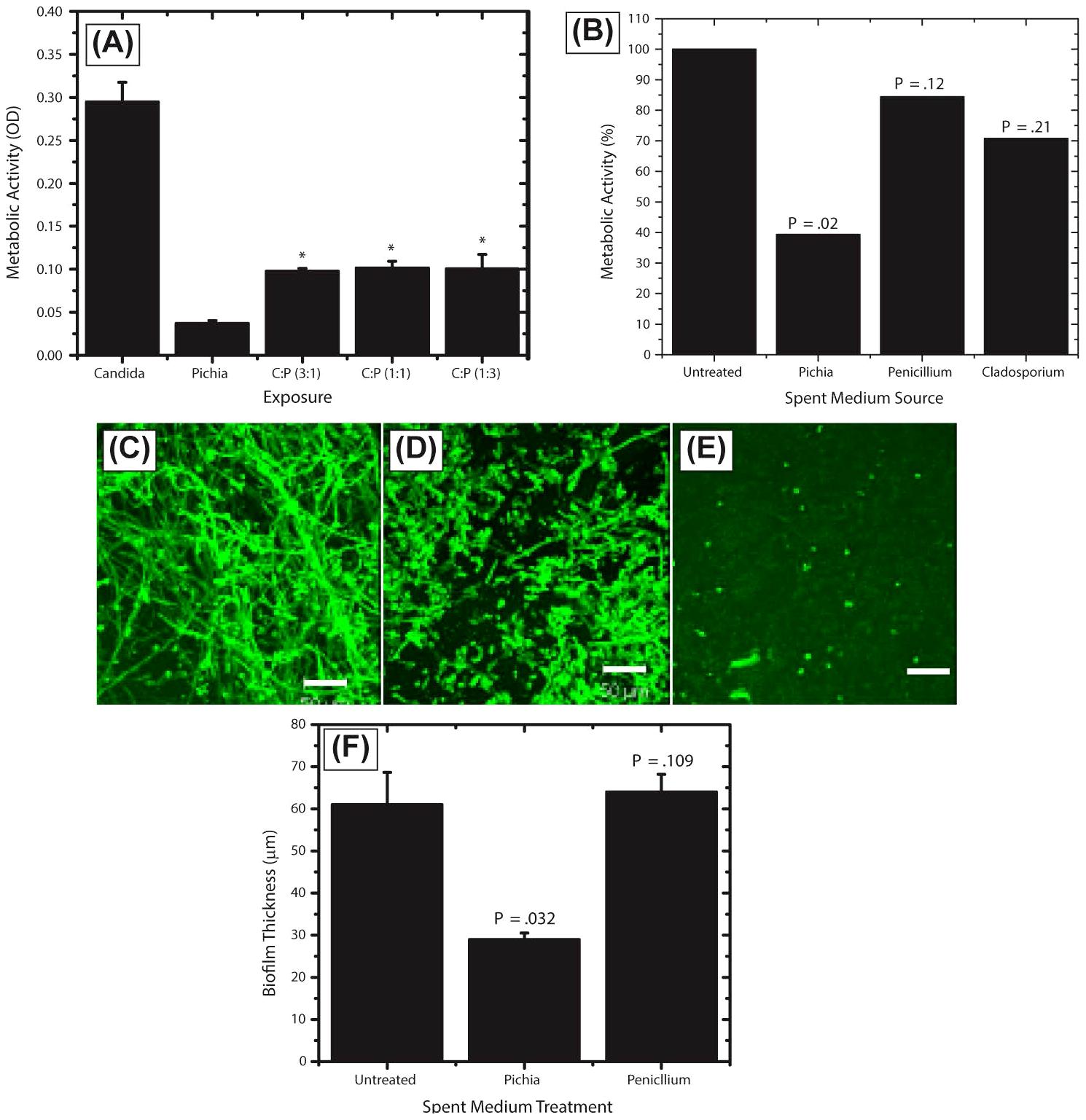 Activity of <i>Pichia</i> spent medium (PSM) against fungal biofilms.