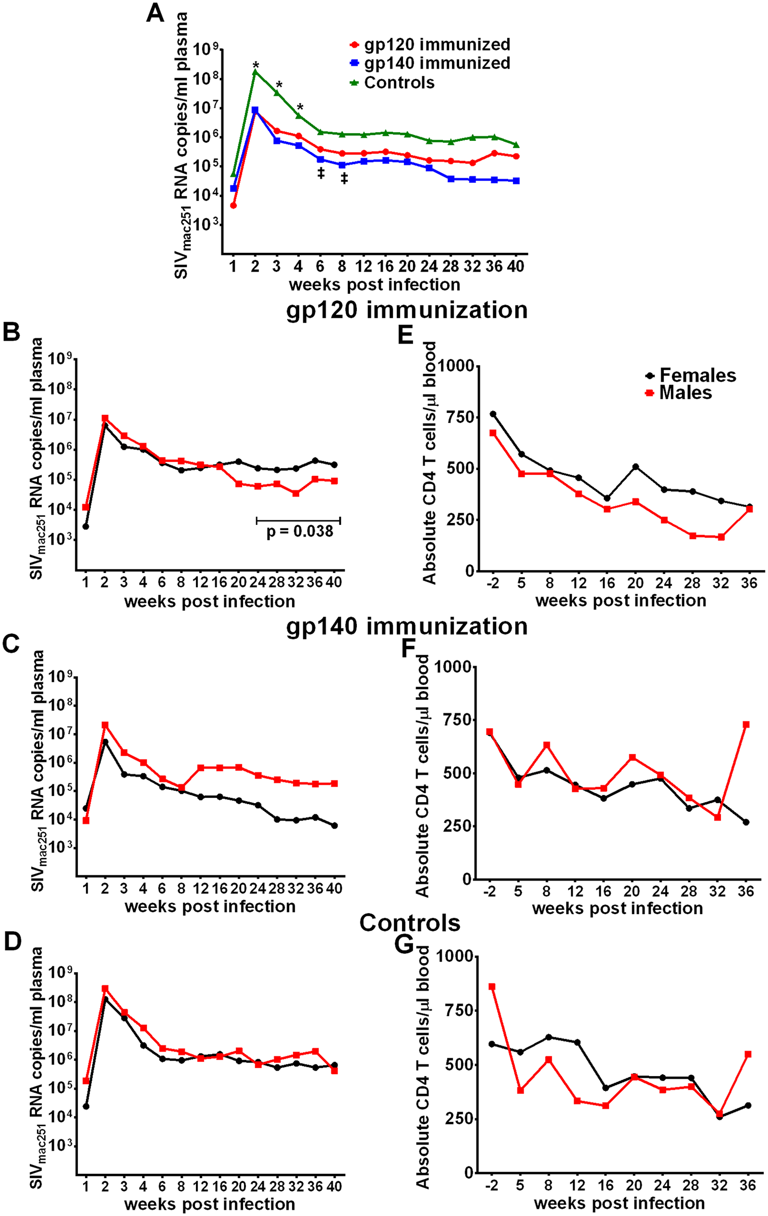 Viral loads post-infection by immunization group and sex.