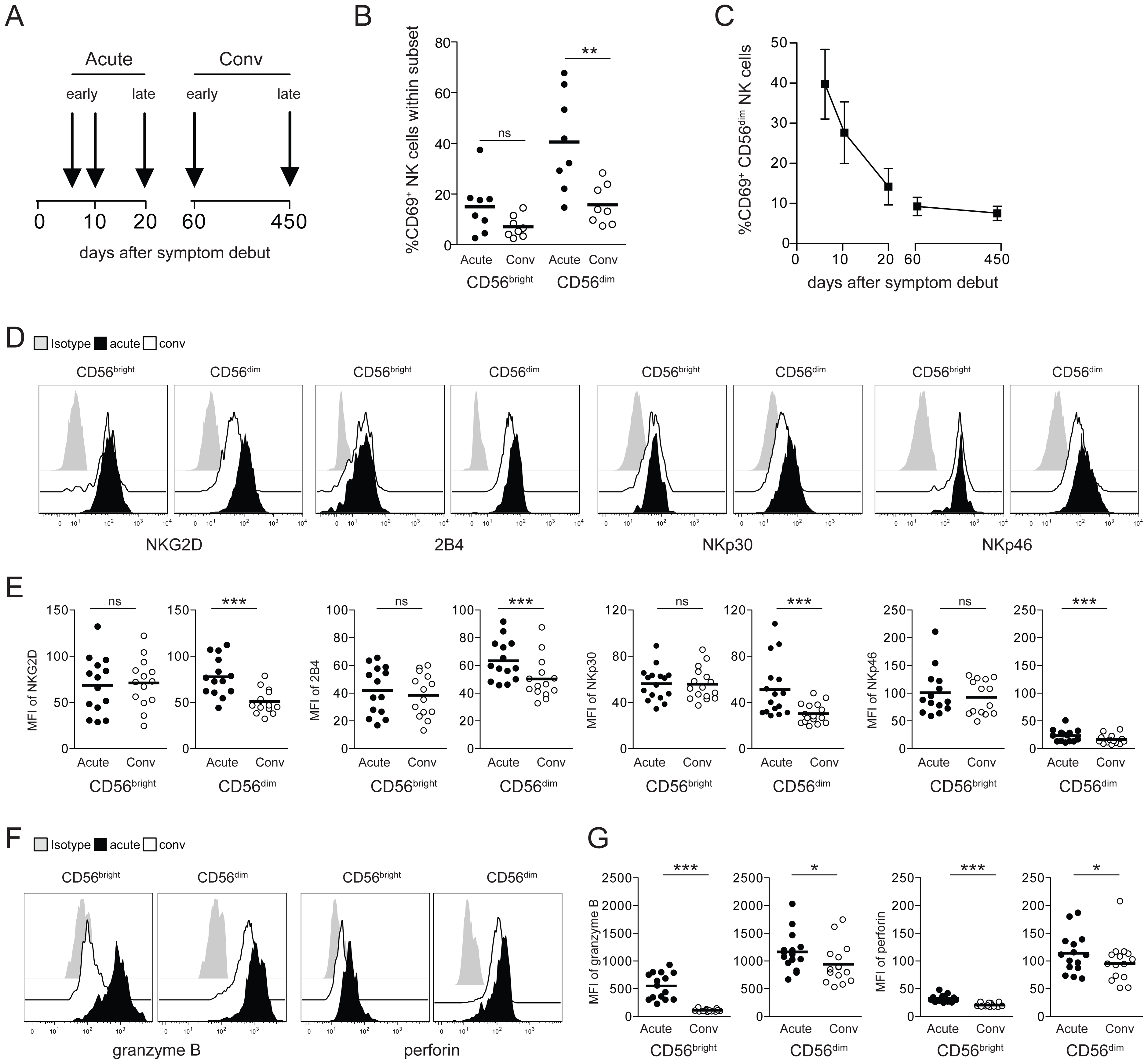CD56<sup>dim</sup> NK cells are highly activated in HFRS patients.