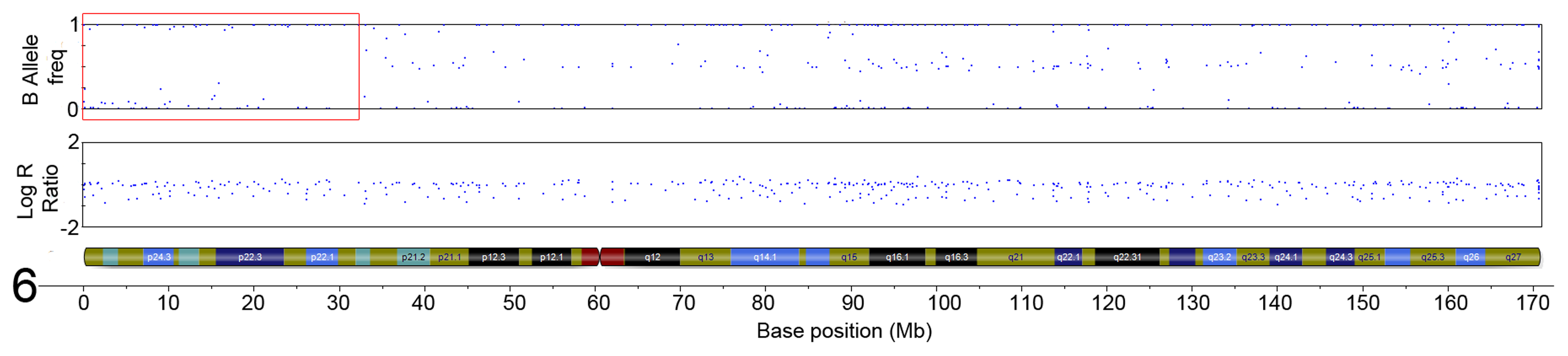 Region of CN-LoH in Chromosome 6 in sample SA2 (specific area illustrated by red box).