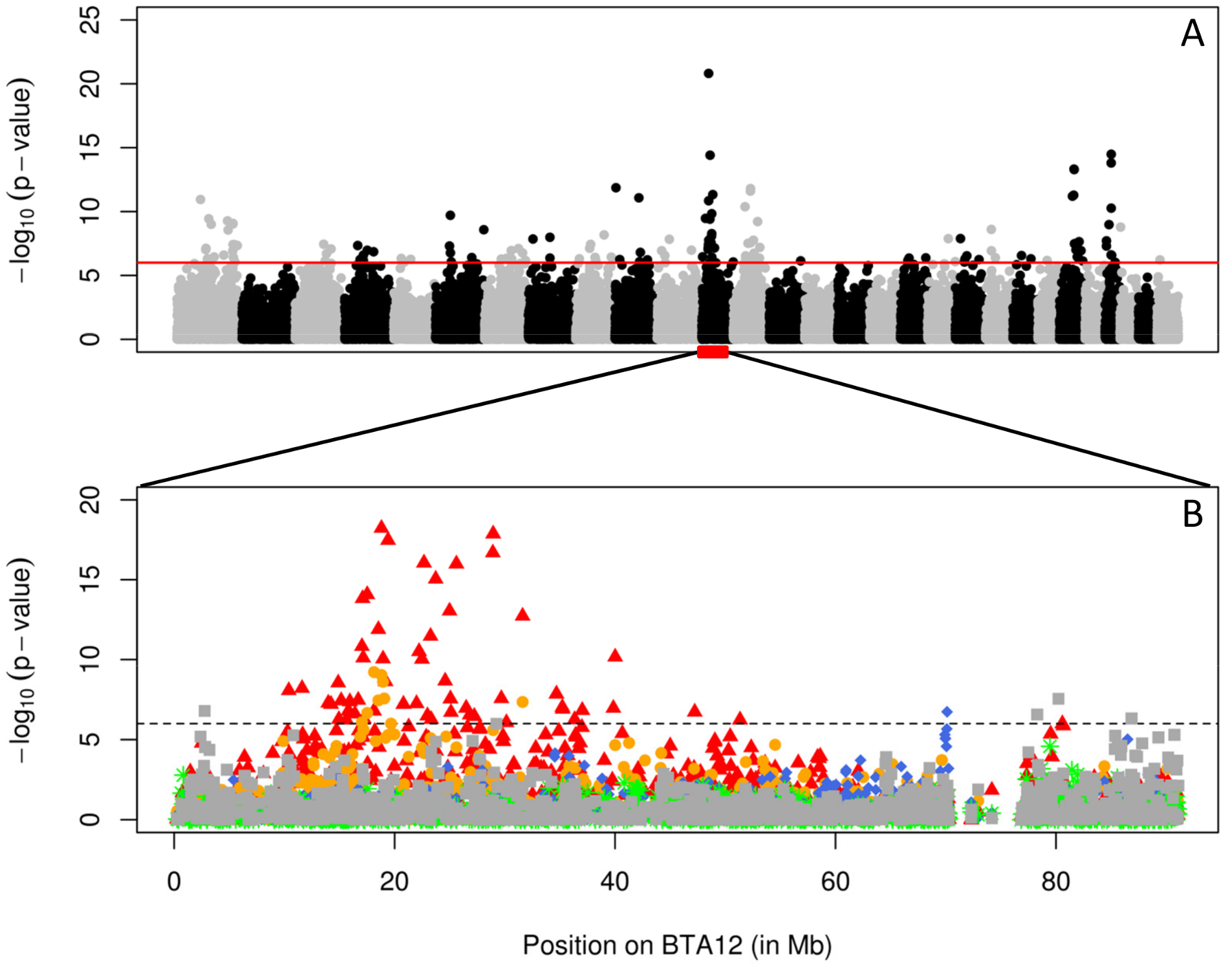Association scan of the bovine genome for QTL influencing fertility.