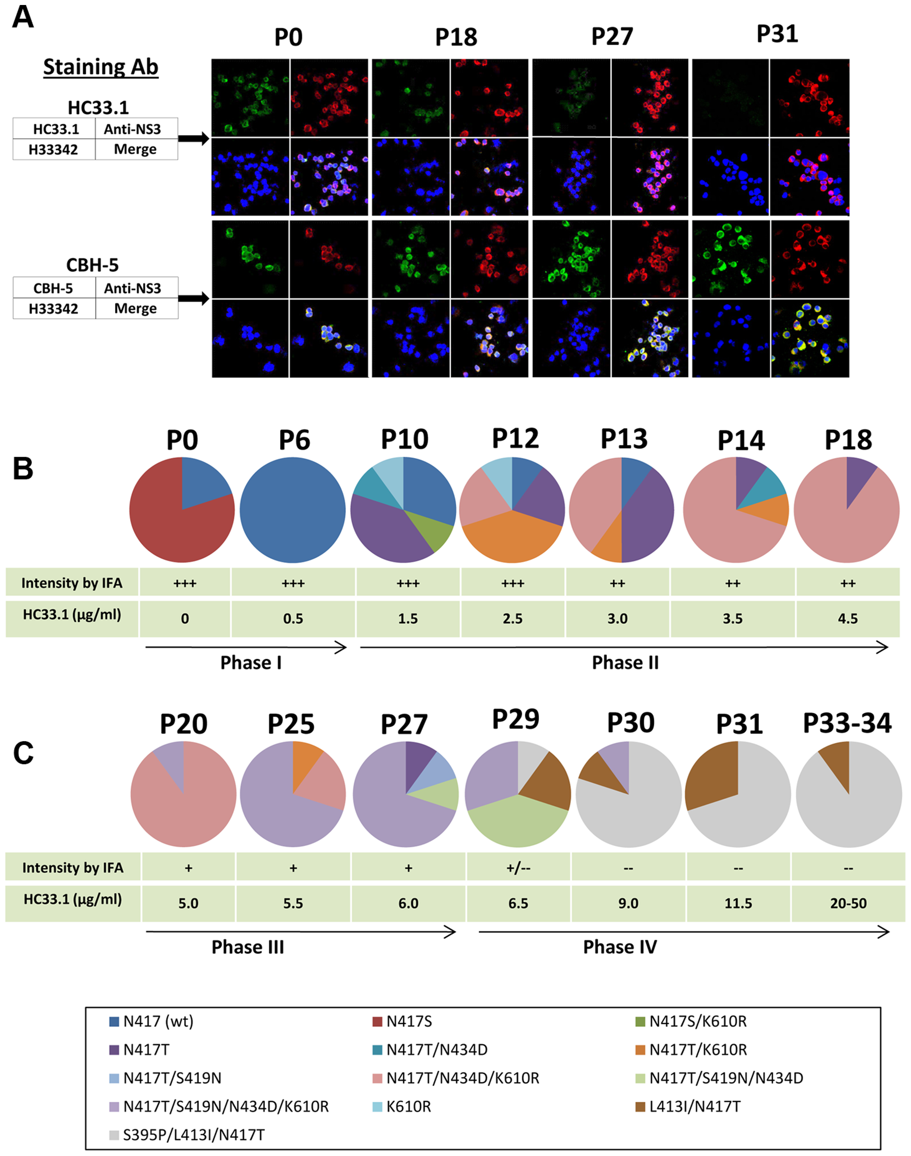 Viral evolution in the presence of increasing HMAb HC33.1 concentrations.