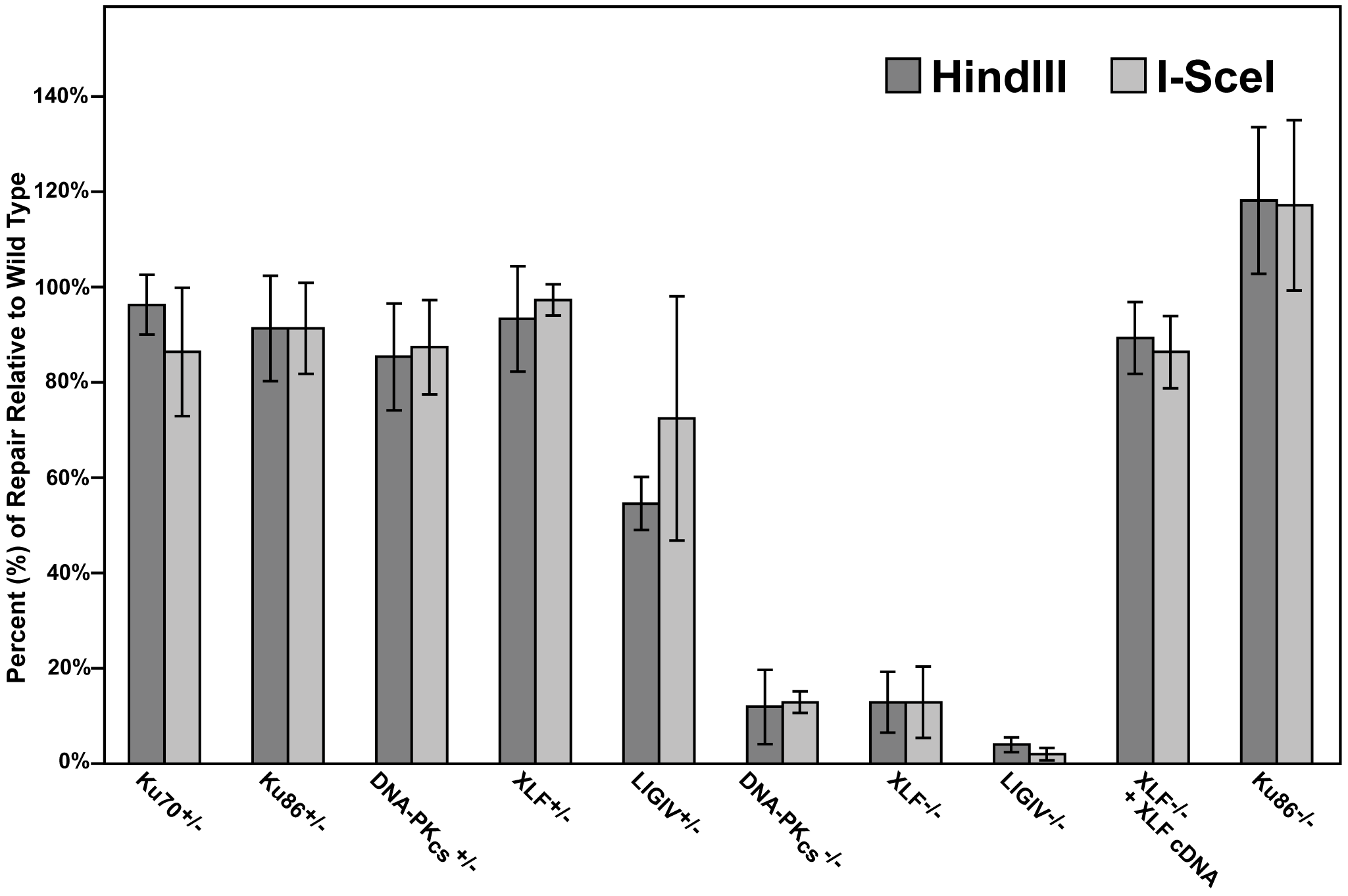 The impact of C-NHEJ mutations on end joining.