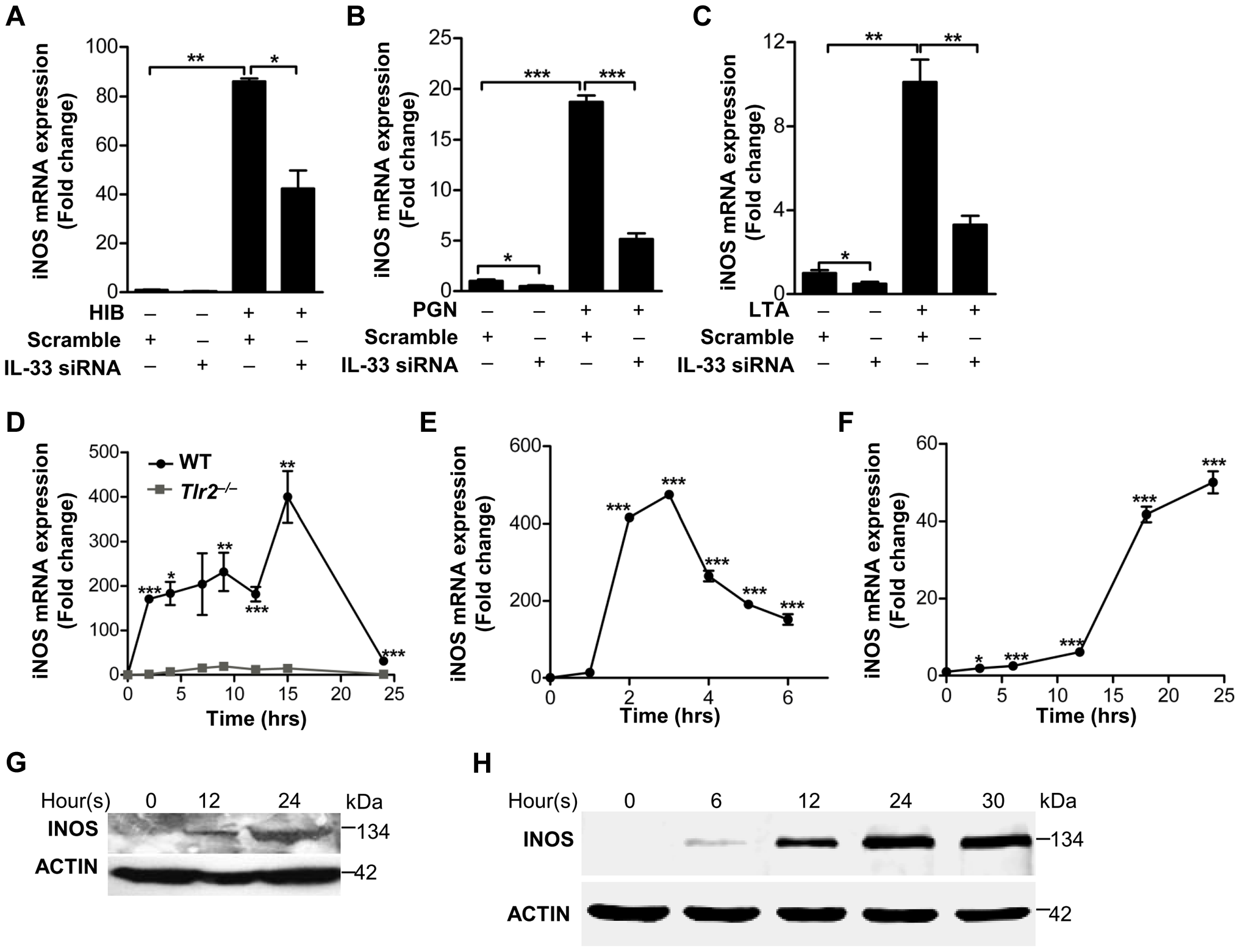 IL-33 induces iNOS in macrophages.