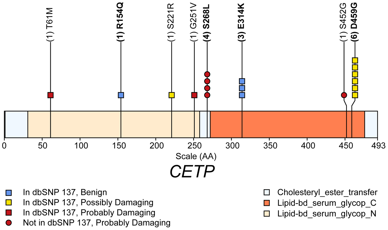 Schematic of rare (MAF&lt;1%) non-synonymous variants used in the gene-level test HDL-C in gene <i>CETP</i>.