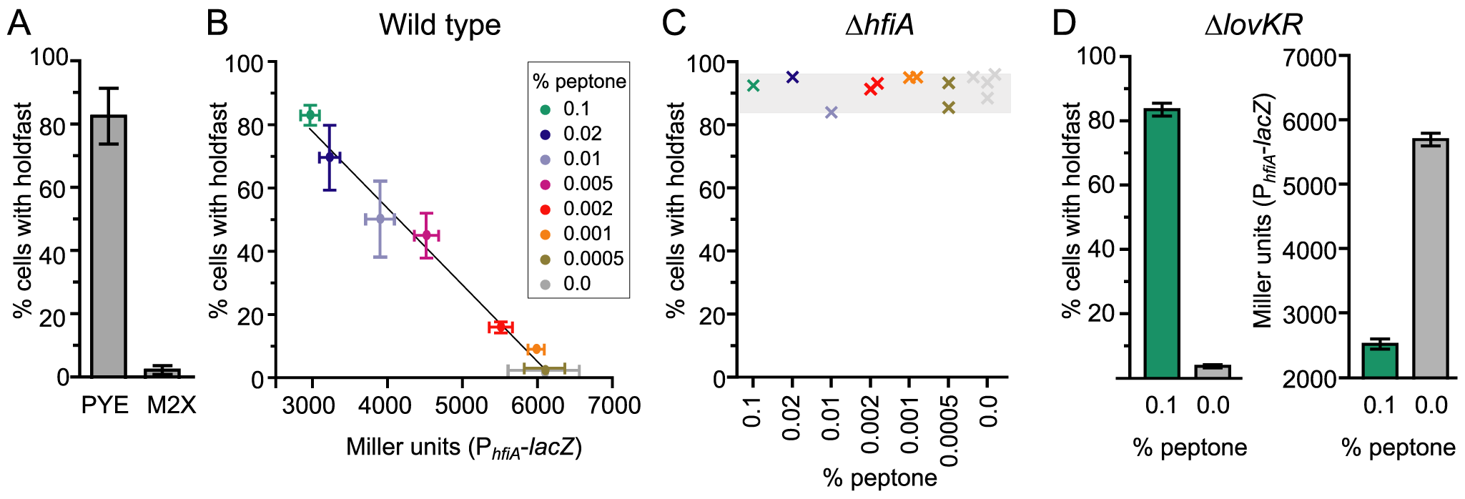 Nutrient environment affects <i>hfiA</i> transcription and the probability of holdfast development.