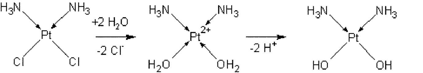 Schéma aktivace cisplatiny po vstupu do buňky (hydrolýza vazeb Pt-Cl)