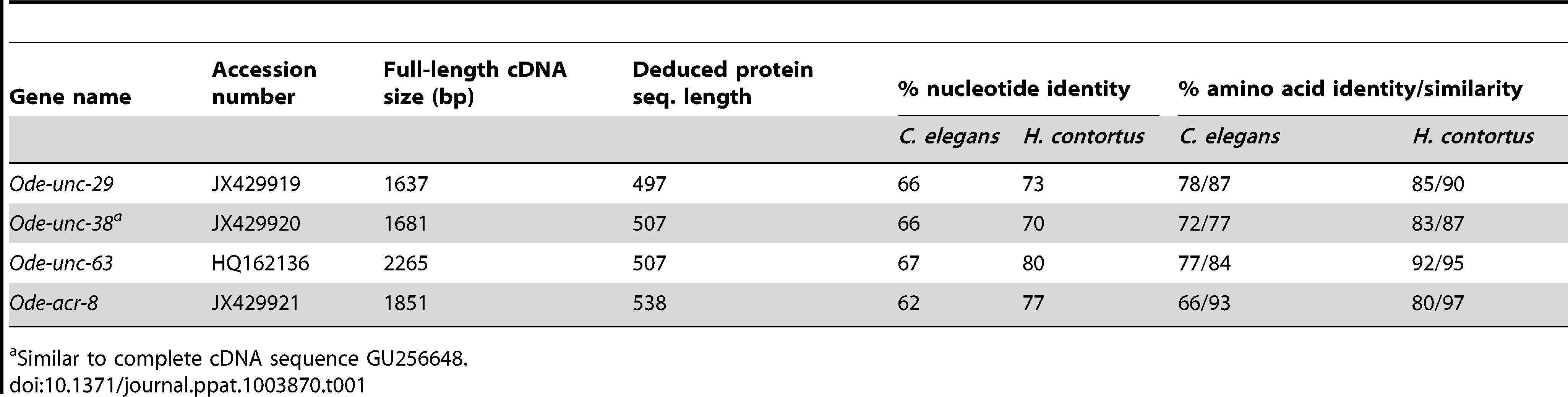 Comparison of <i>O. dentatum</i> AChR subunits with the homologs of <i>C. elegans</i> and <i>H. contortus</i>.
