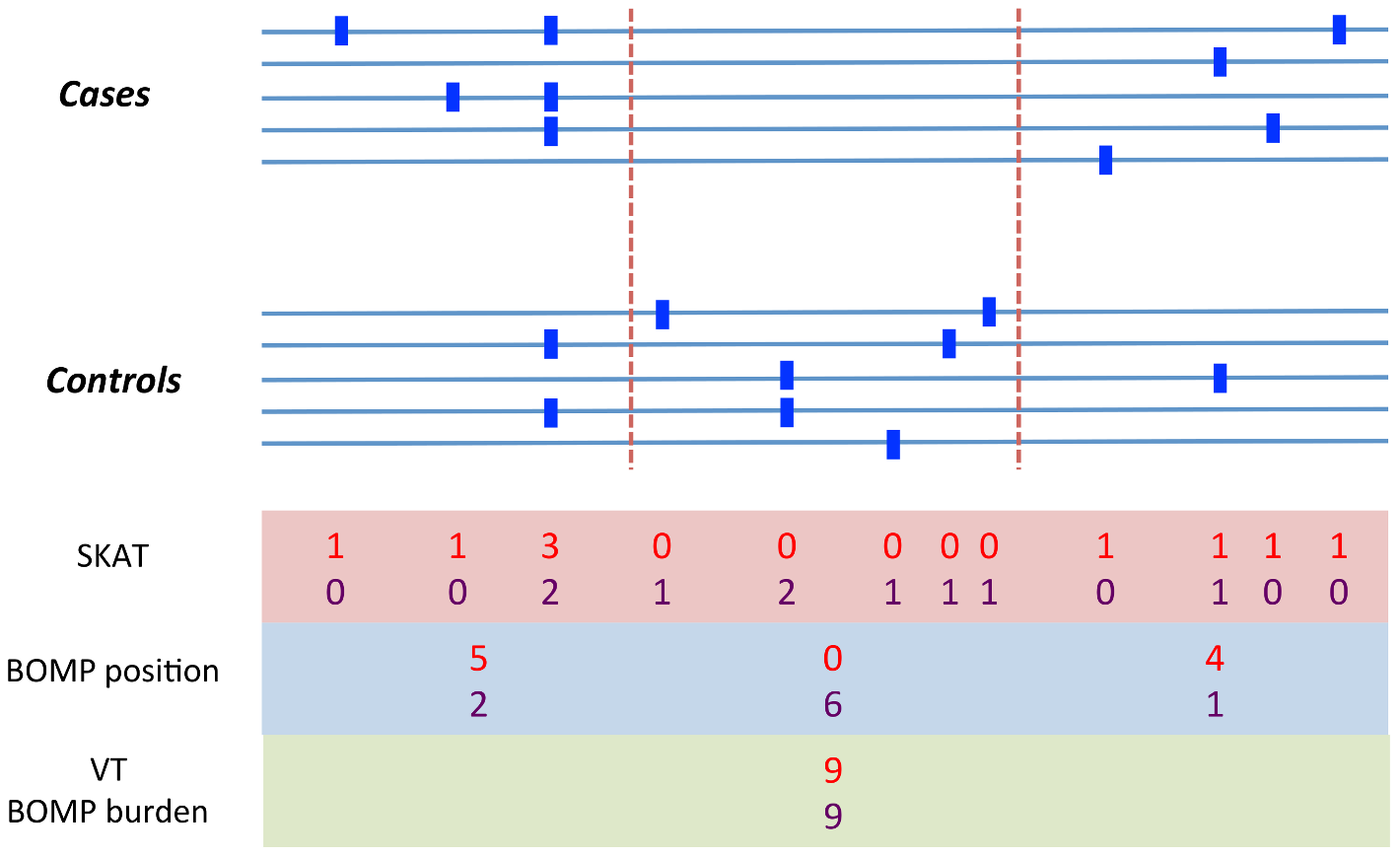 Example variation pattern in which position distribution outperforms burden tests.