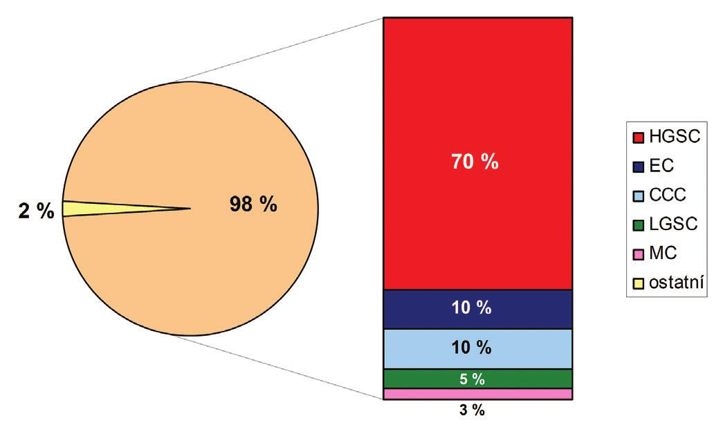 Grafické znázornění četnosti výskytu jednotlivých histologických typů ovariálních karcinomů.