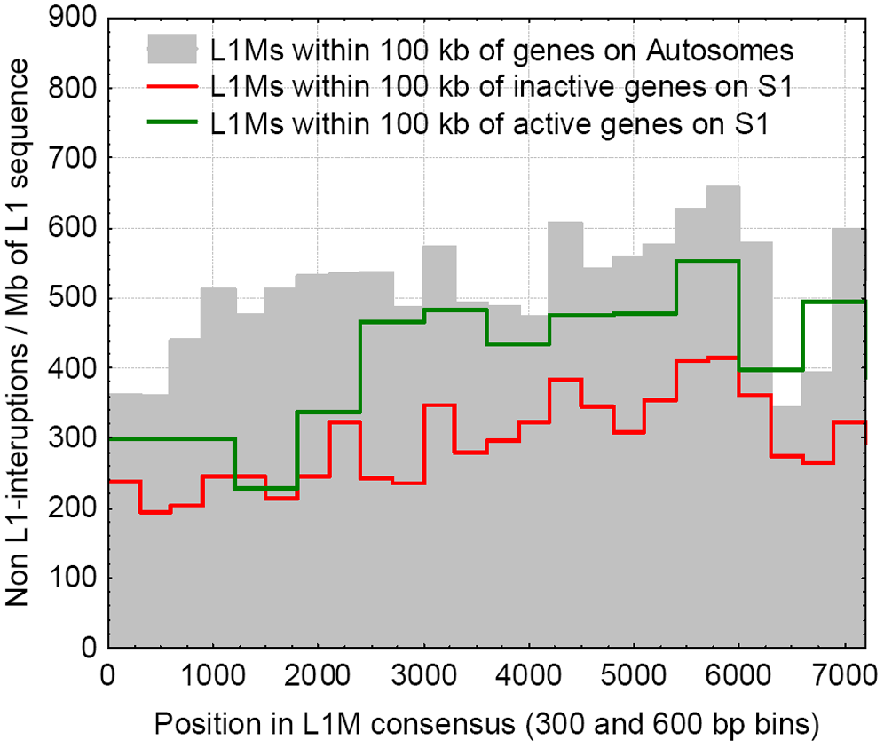 The frequencies of interruptions into L1Ms, within 100 kb of genes, for the genes that escape inactivation on the S1, are inactivated on the S1, and on the autosomes.