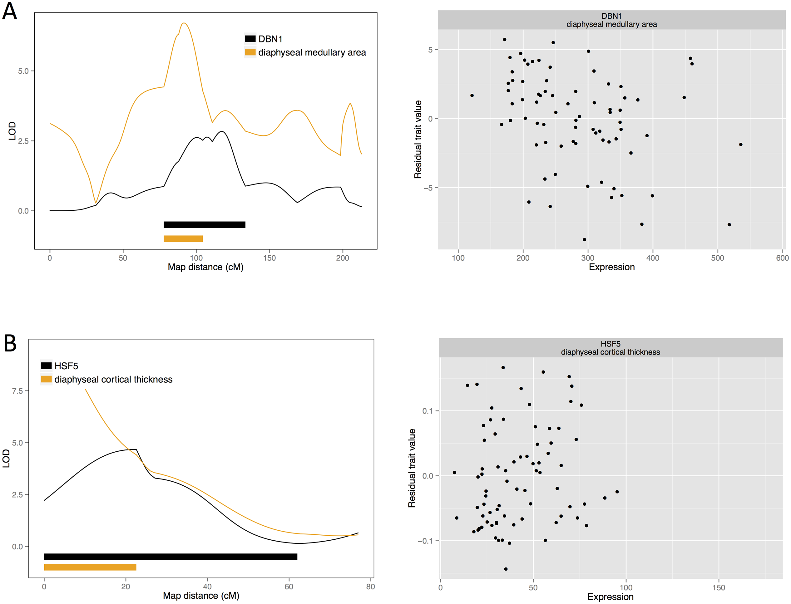 Candidate quantitative trait genes (A) <i>DNB1</i> for female medullary and (B) <i>HSF5</i> for female cortical traits: LOD curves and confidence intervals of bone QTL and associated eQTL, and scatterplots of residual phenotypes against gene expression values.