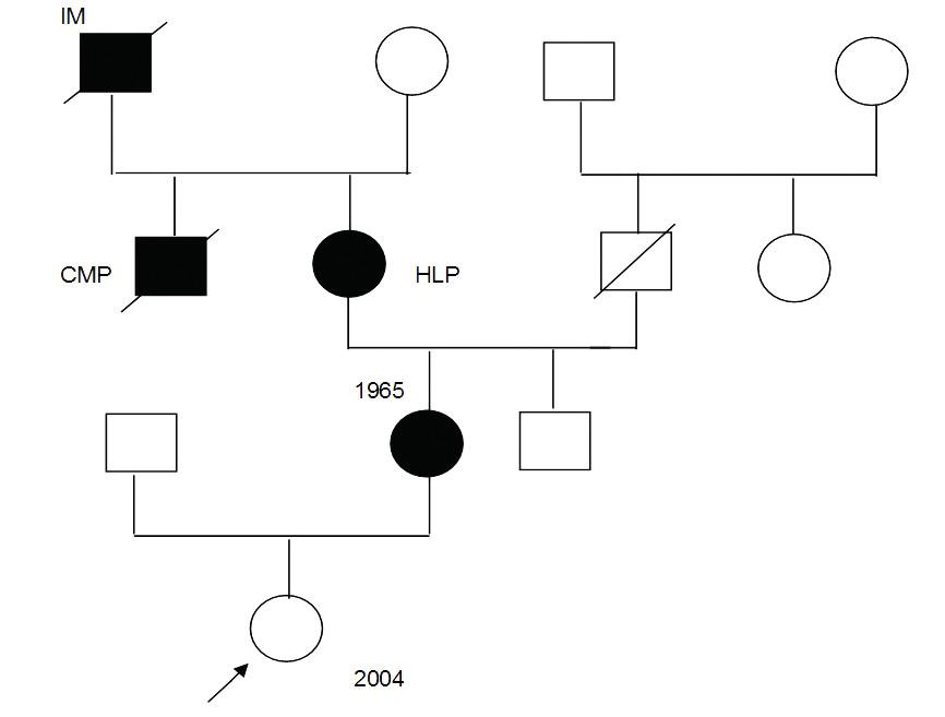 Rodokmen dítěte narozeného pacientce s familiární hypercholesterolémií a léčené statiny v těhotenství