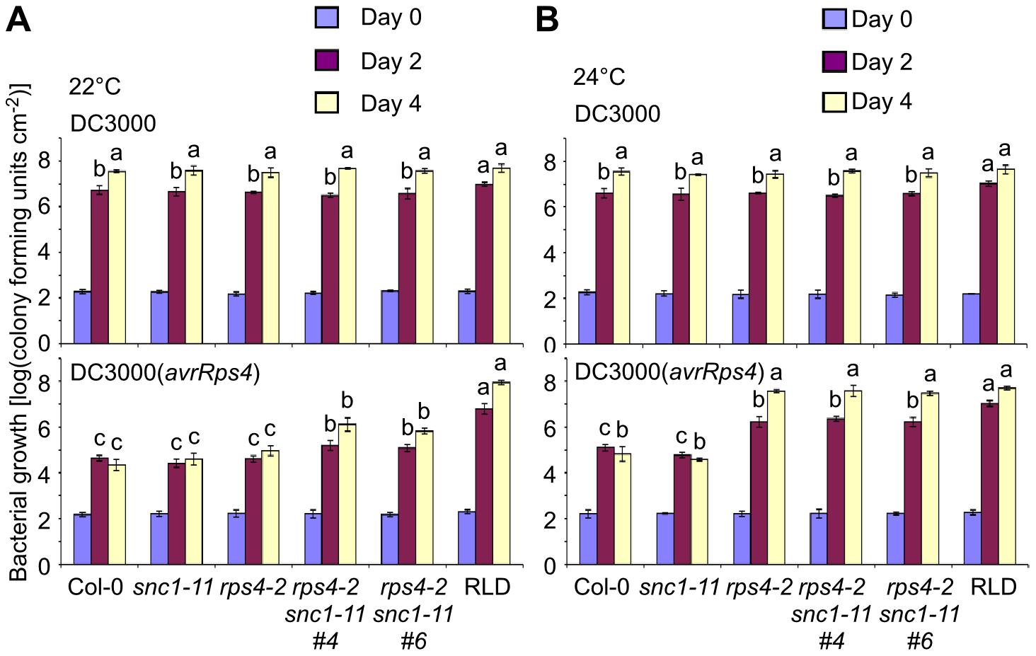 <i>RPS4</i> and <i>SNC1</i> contribute redundantly to AvrRps4-triggered resistance.