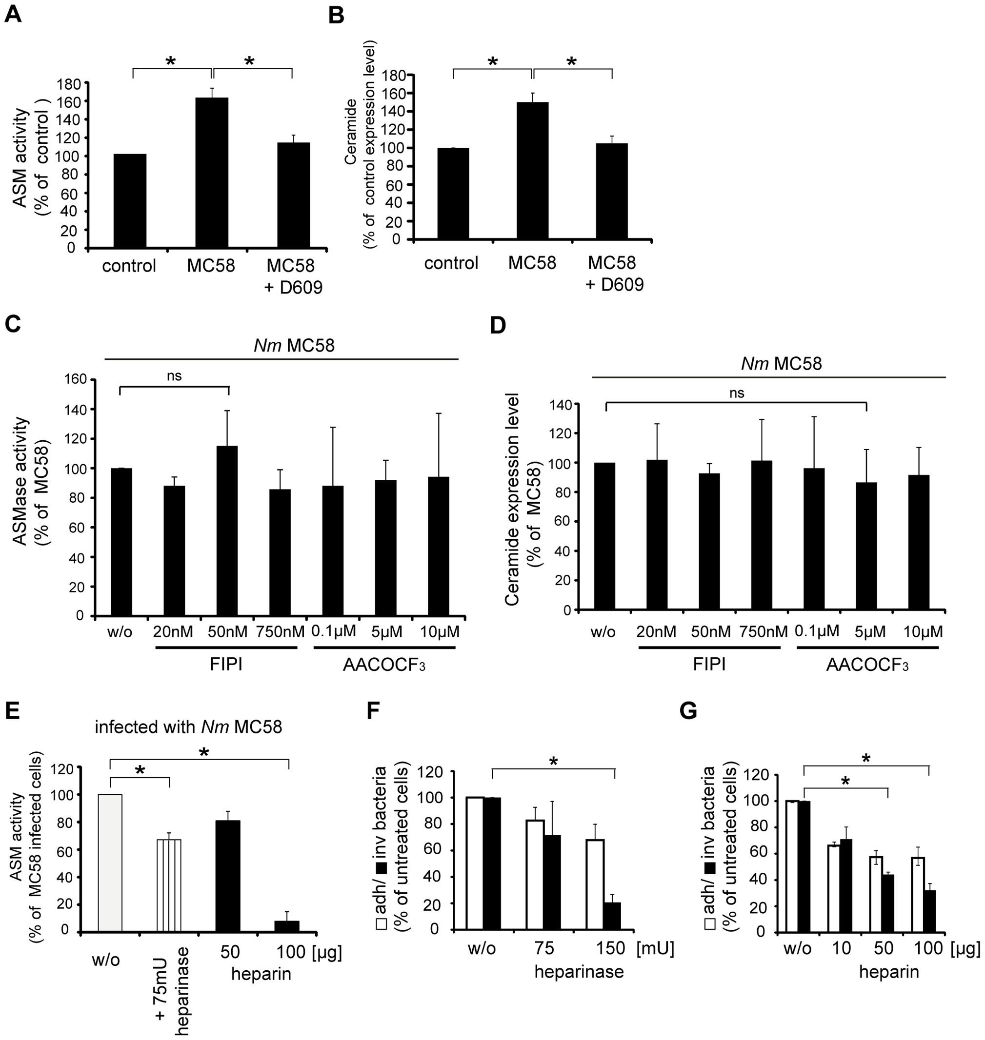 Phosphatidylcholine-specific phospholipase C (PC-PLC) is involved in ASM activation and bacterial uptake by HBMEC.