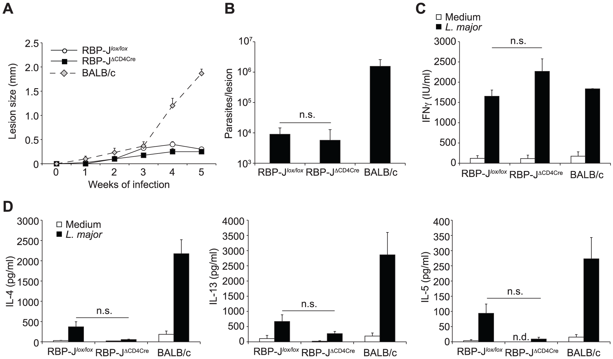 The impact of Notch signaling on Th1 differentiation is RBP-Jκ-independent.