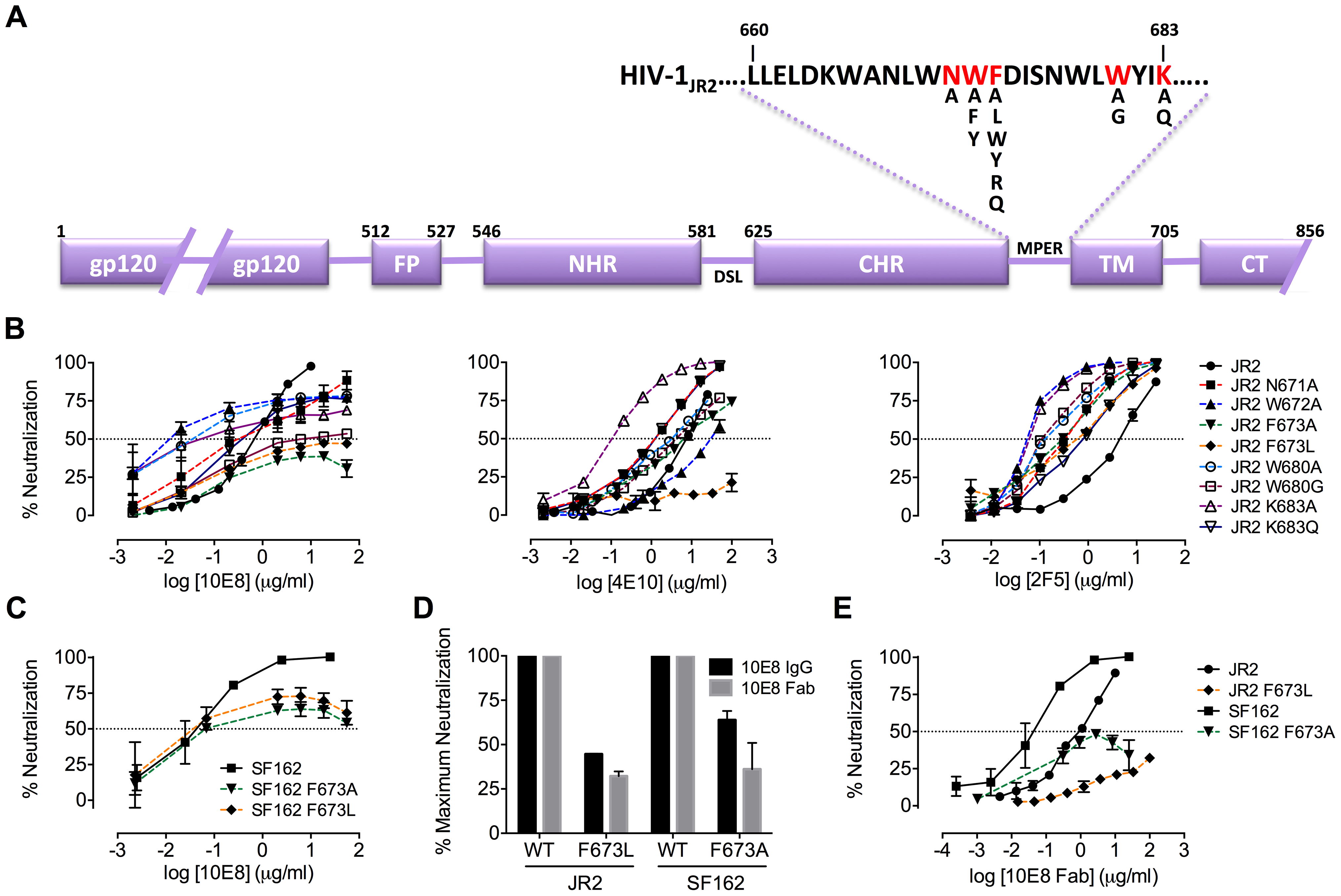 Partial neutralization of HIV-1 JR2, SF162 and corresponding MPER mutants by 10E8.