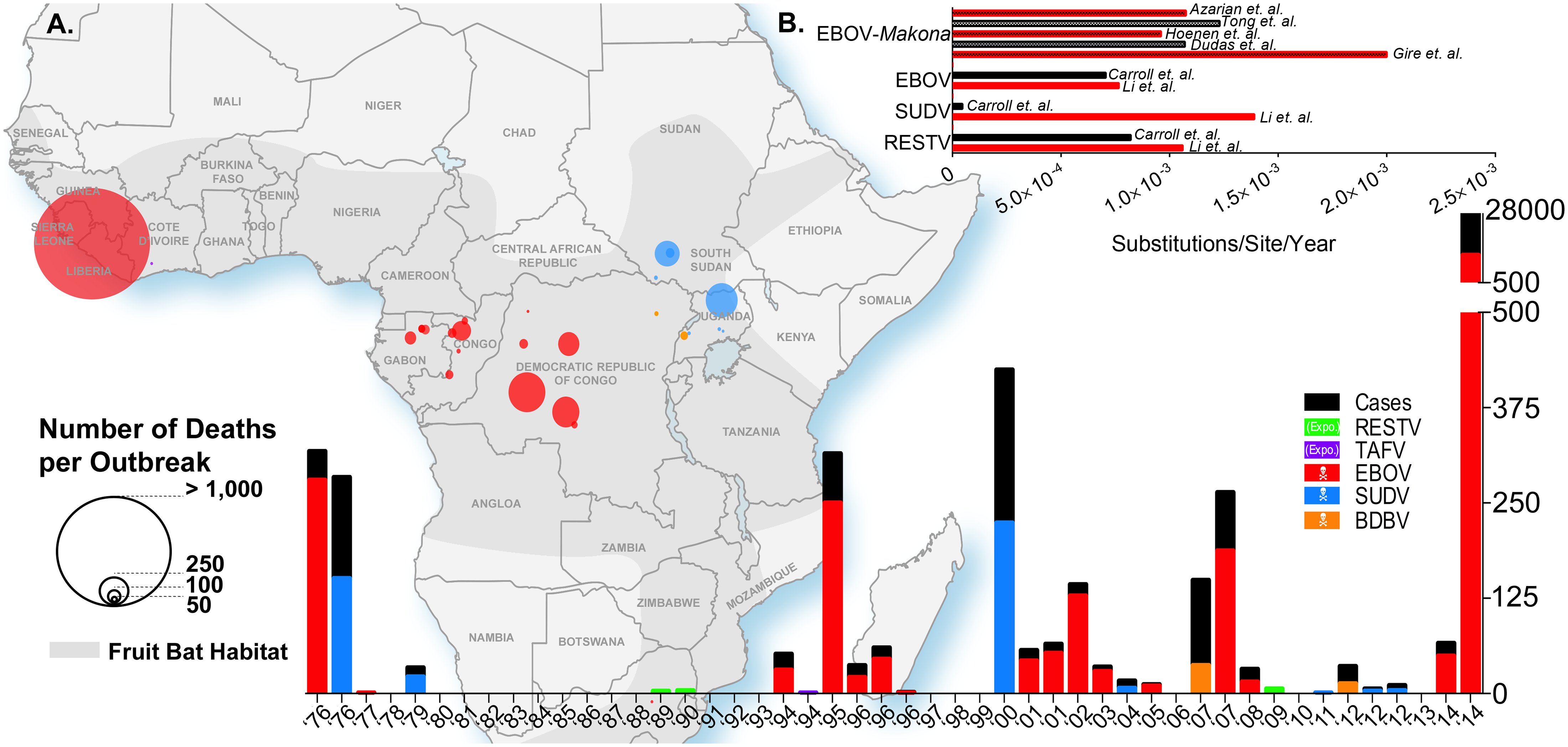 Ebolavirus outbreaks past and present.