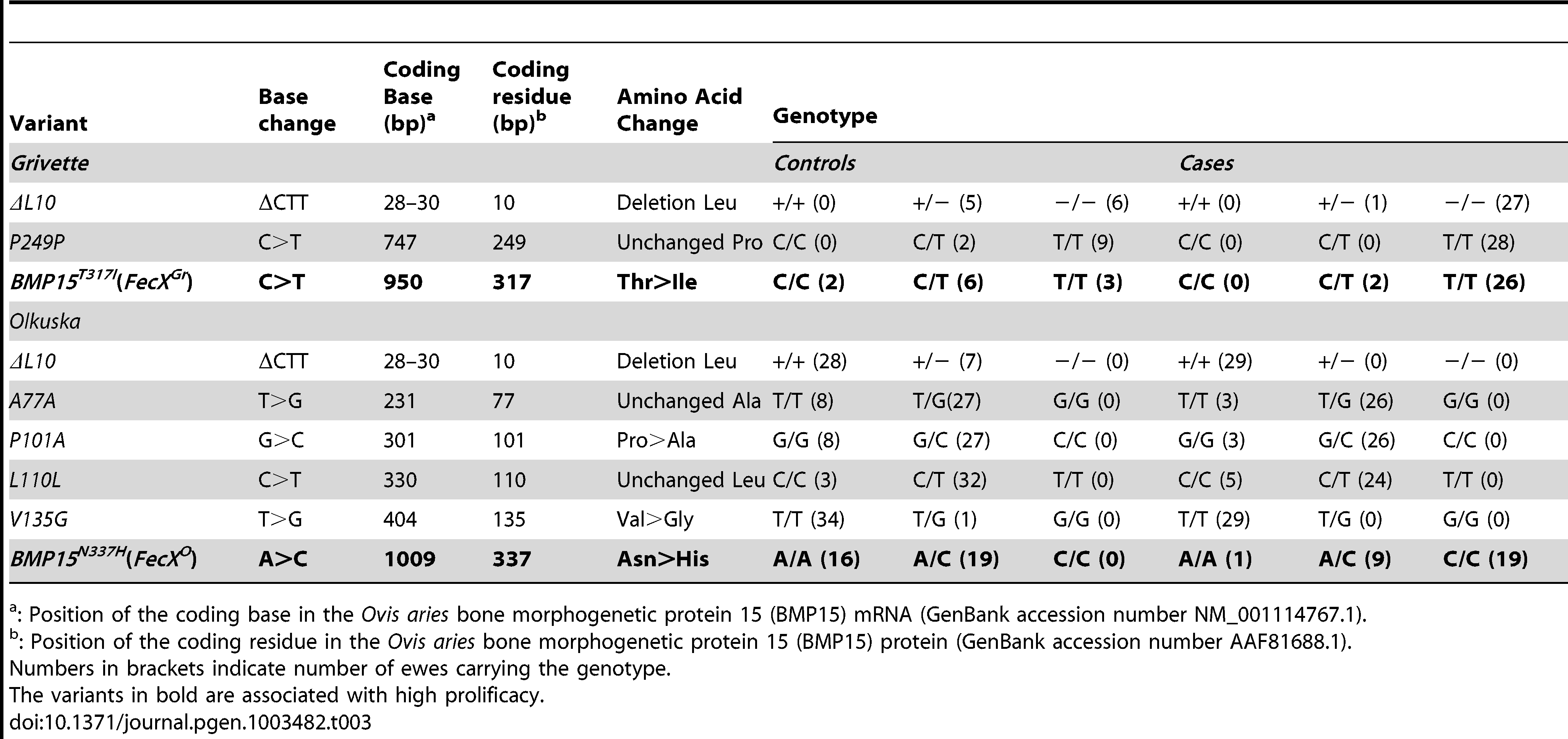 BMP15 genetic variants identified in the Grivette and the Olkuska populations.
