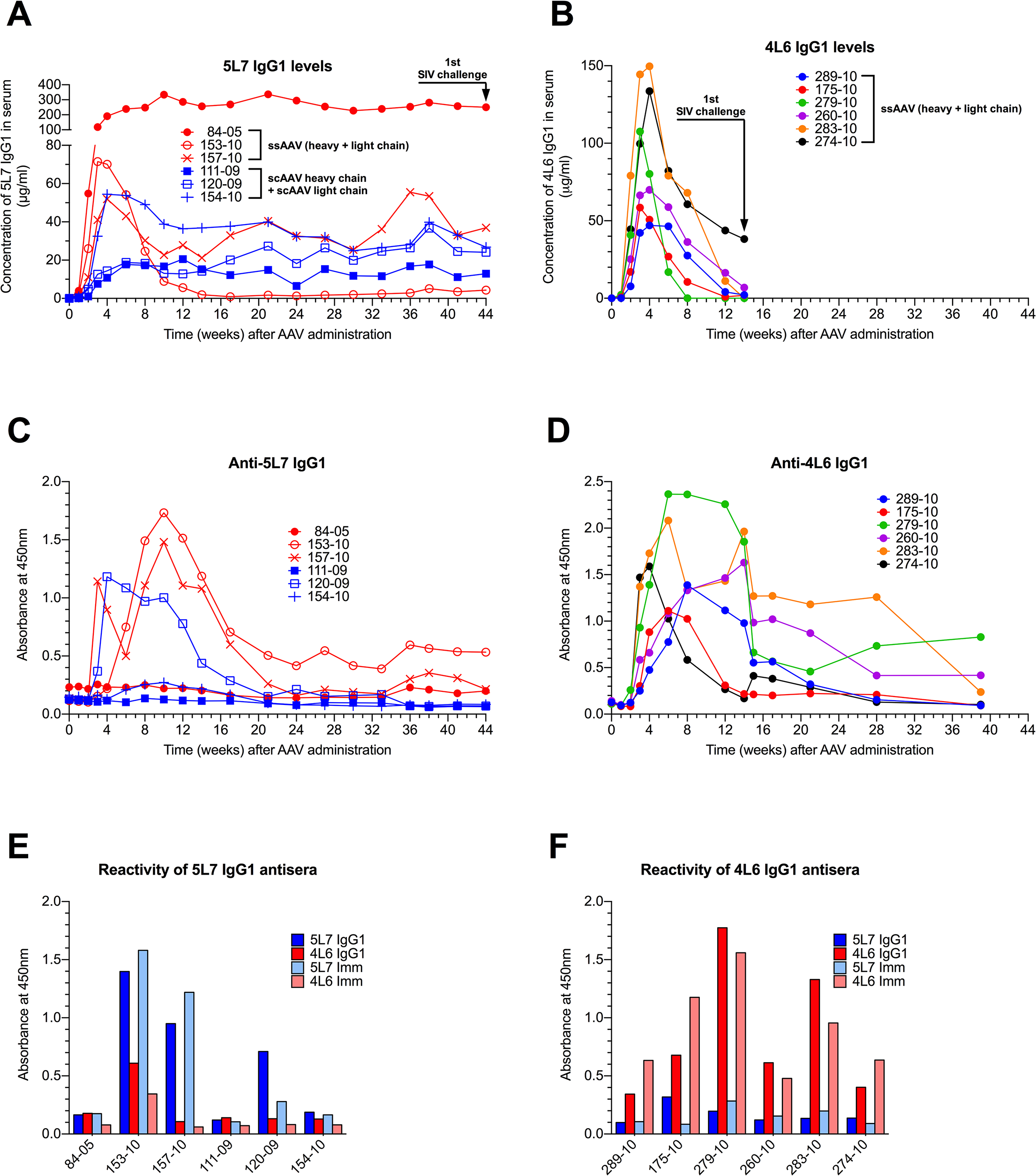 Serum concentration of the IgG1 mAbs 4L6 and 5L7, and emerging anti-mAb responses following recombinant AAV administration.