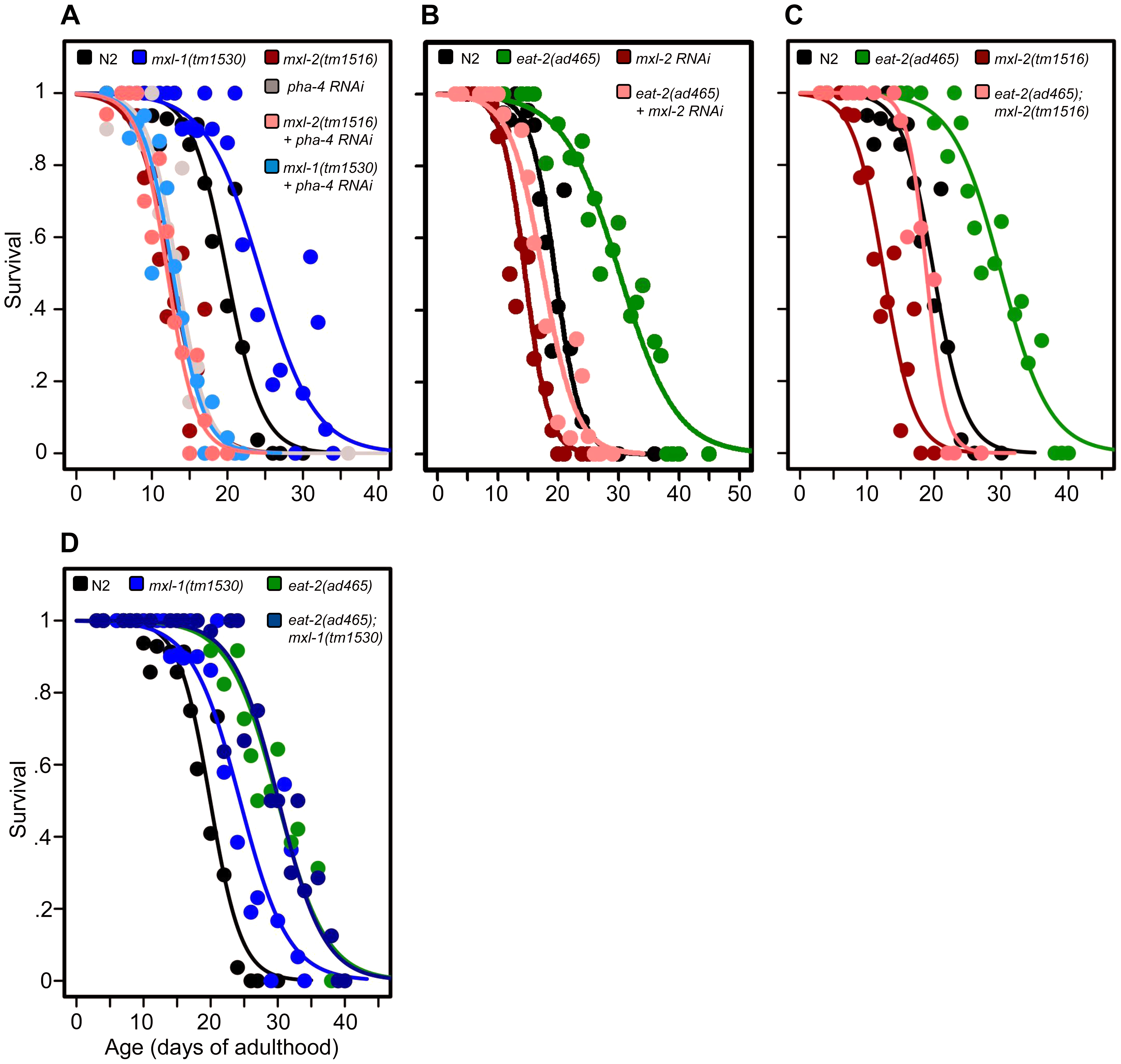 The Myc-Mondo/Mad complexes intersect with dietary restriction in longevity.