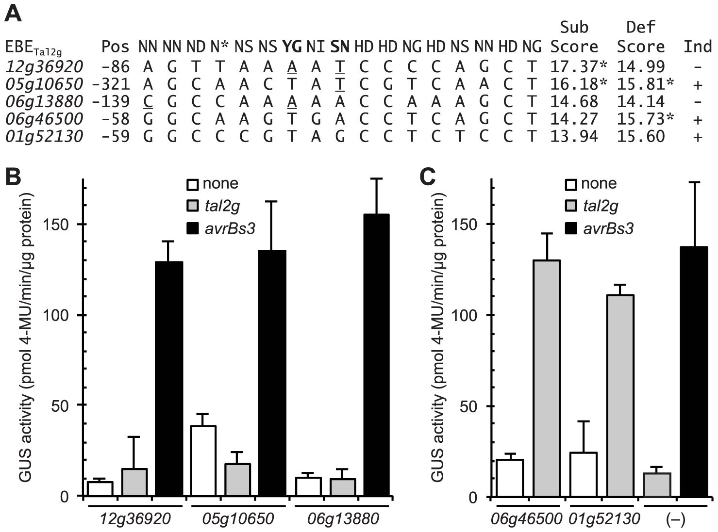 Functional characterization of selected rice promoter sequences similar to the verified Tal2g EBEs.