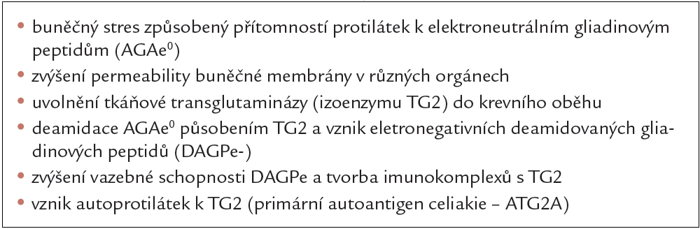 Patogenetické reakce předcházející vznik celiakie.