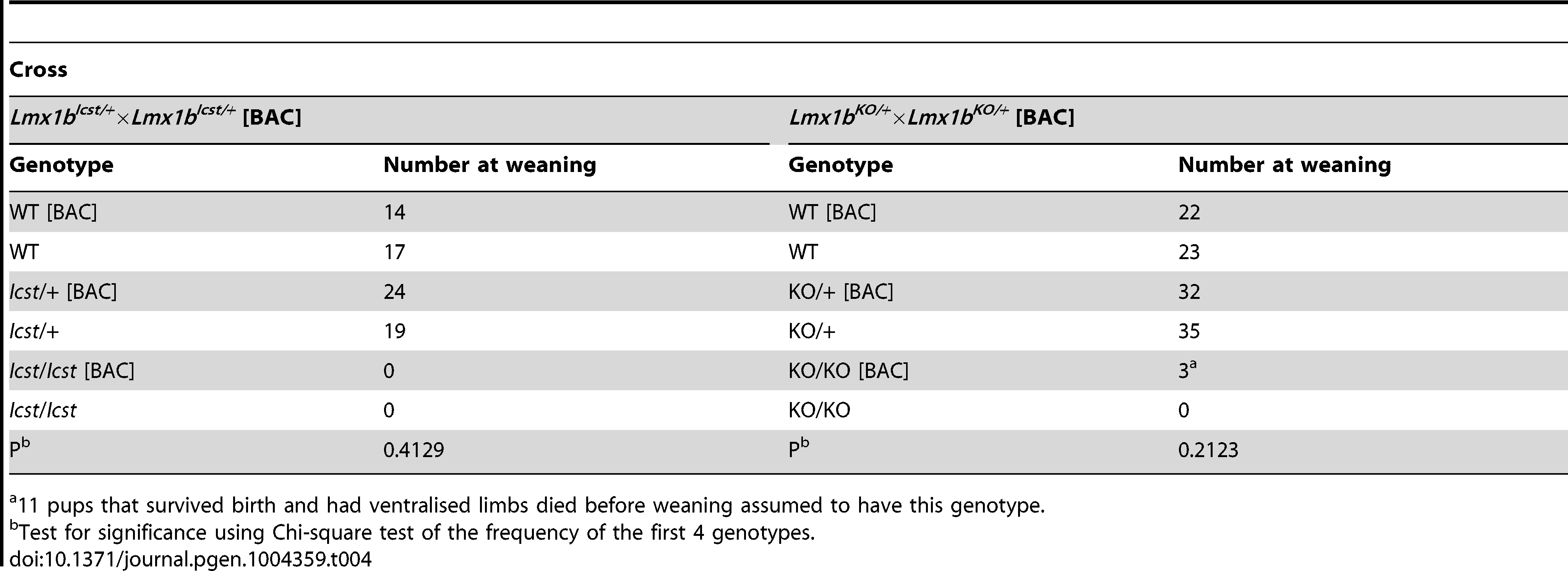 The transgenic BAC rescues the <i>Icst</i> heterozygous semi-lethal phenotype but not the homozygous lethal phenotype and can rescue the knockout homozygous lethal phenotype.