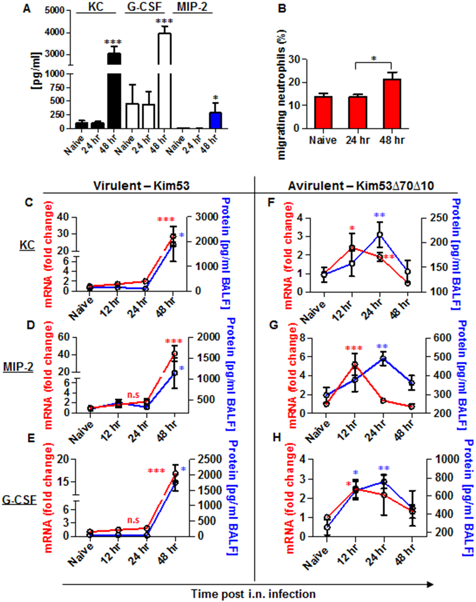 Expression of inflammatory signals involved in neutrophil chemotaxis in the blood and lungs of mice infected i.n. with <i>Y</i>. <i>pestis</i> strains.